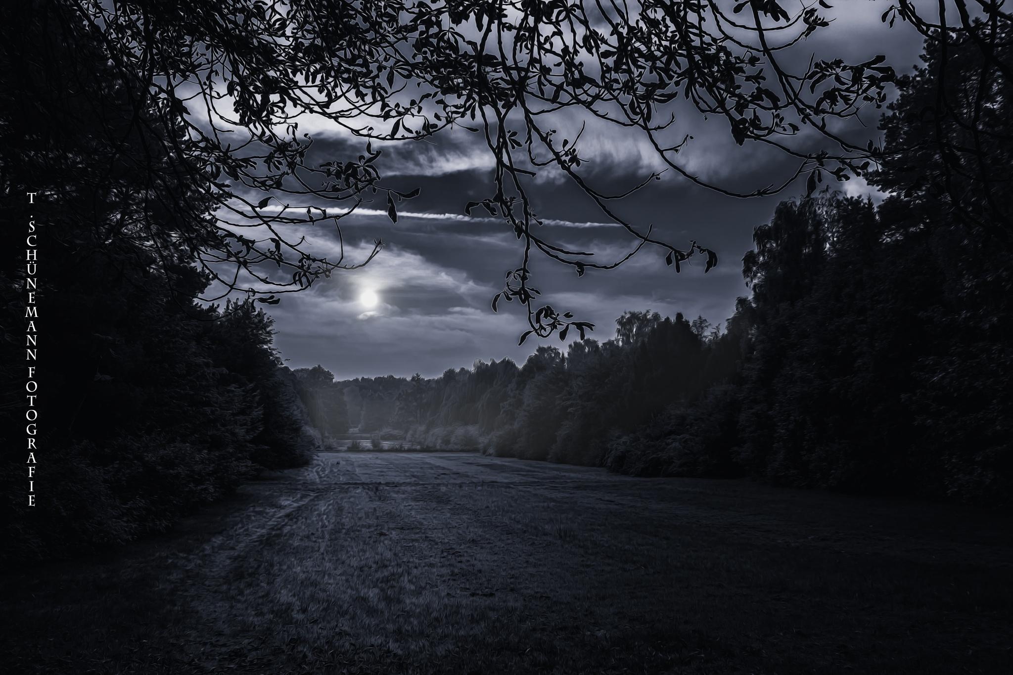 Night Shift by Thorsten Schünemann