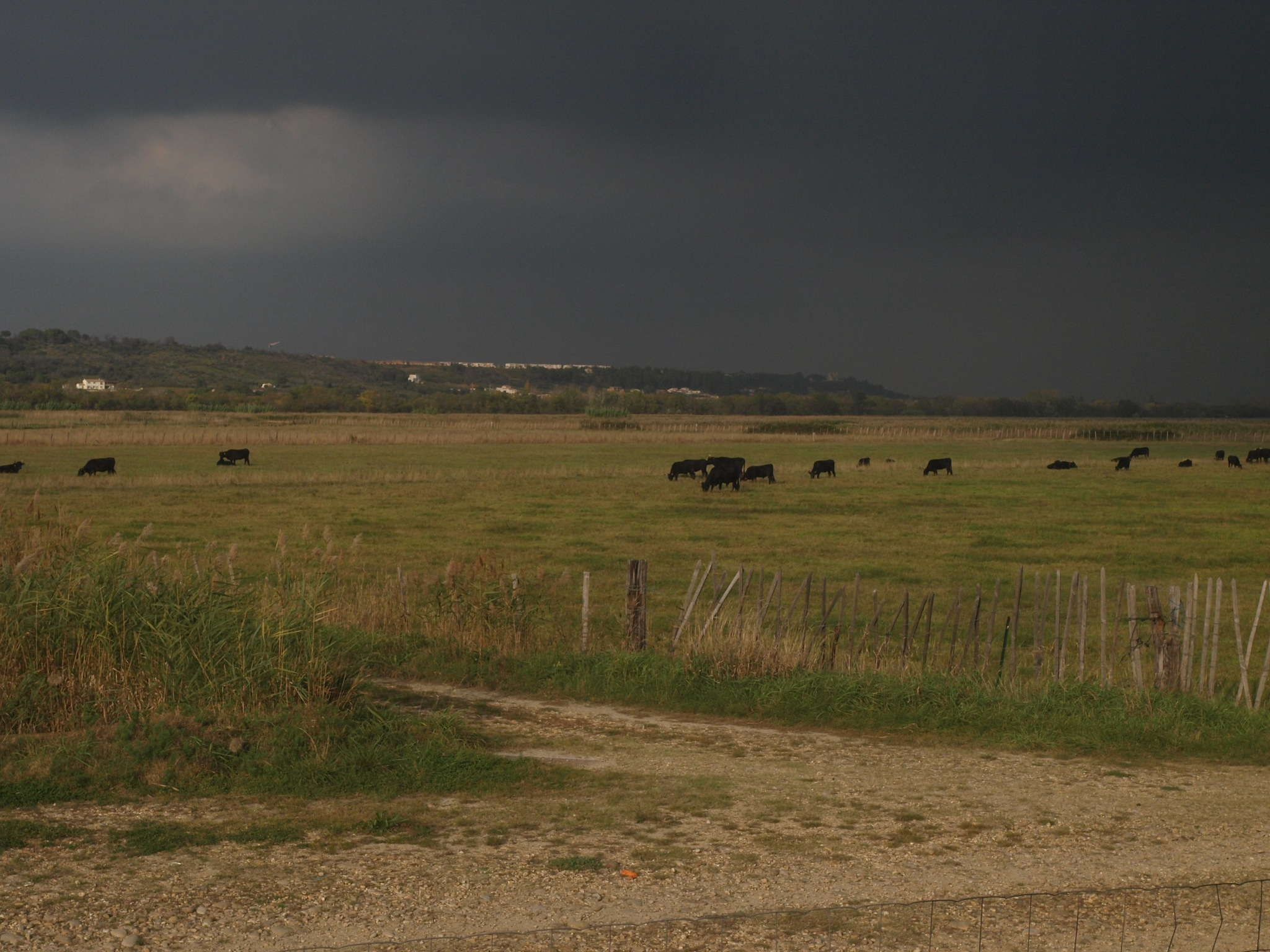 Storm at the countryside by antónio costa