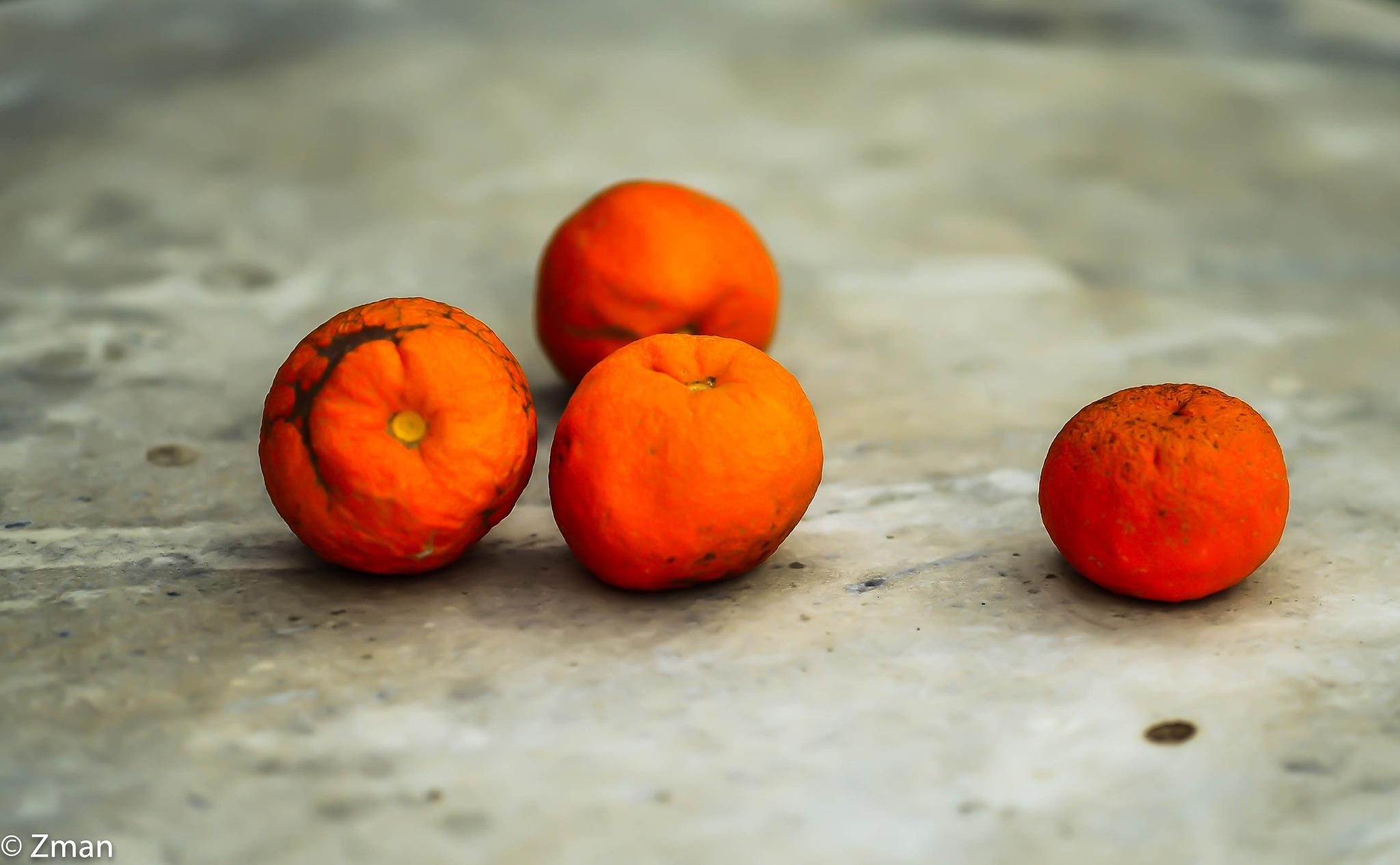 4 Oranges by muhammad.nasser.963