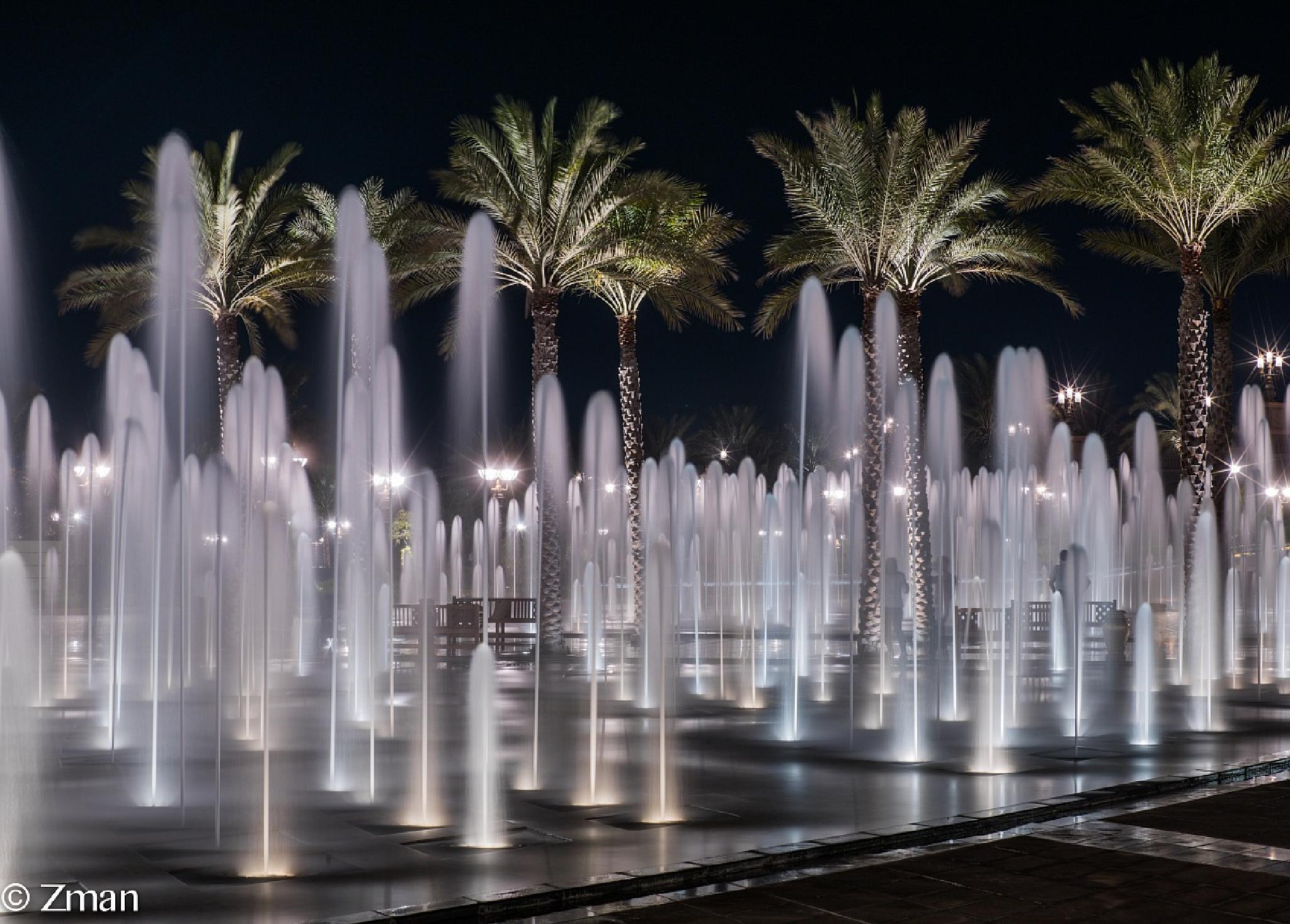 The Fountain In Front of THe Conference Palace Hotel by muhammad.nasser.963