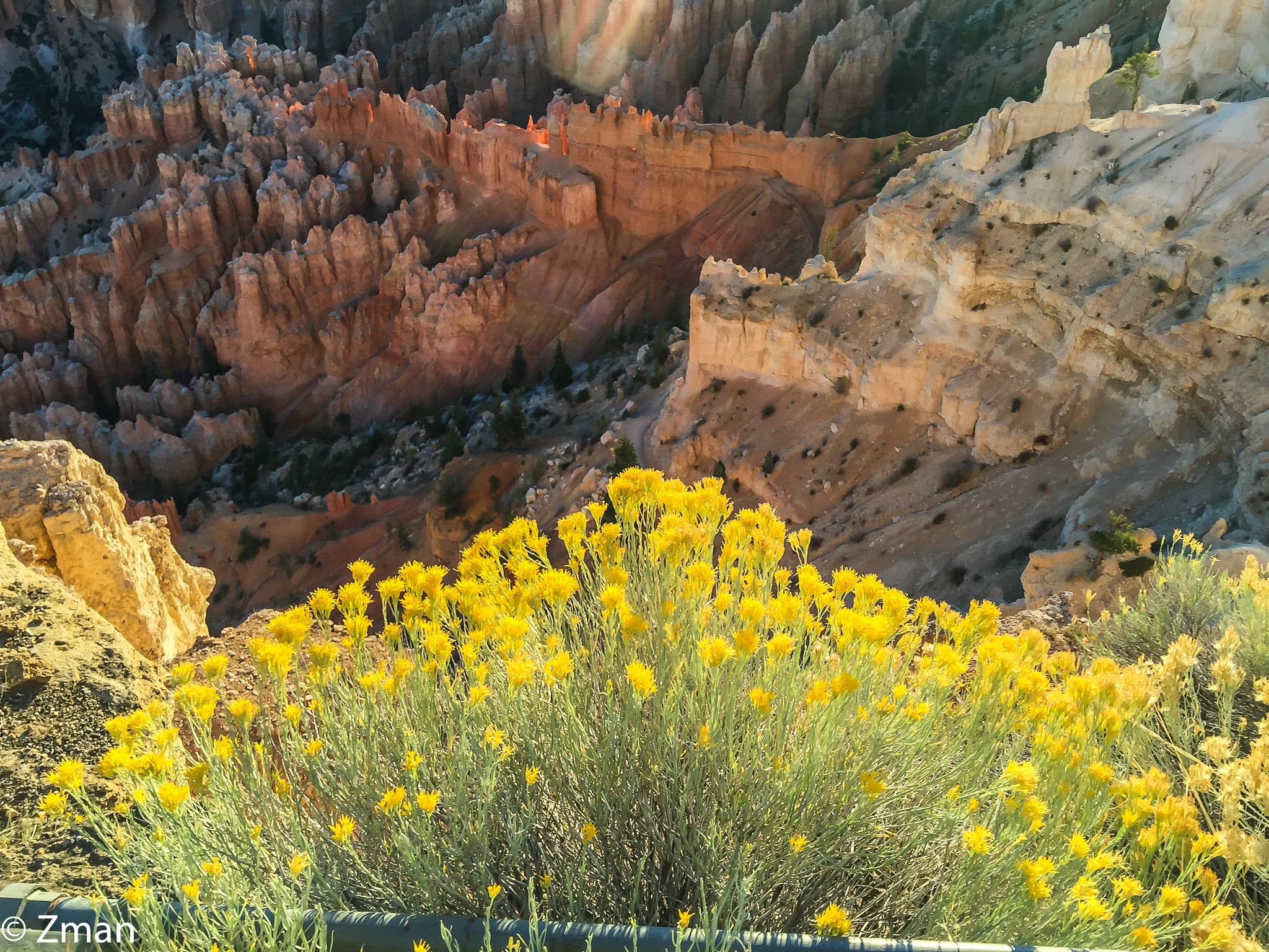 At Bryce National Park by muhammad.nasser.963