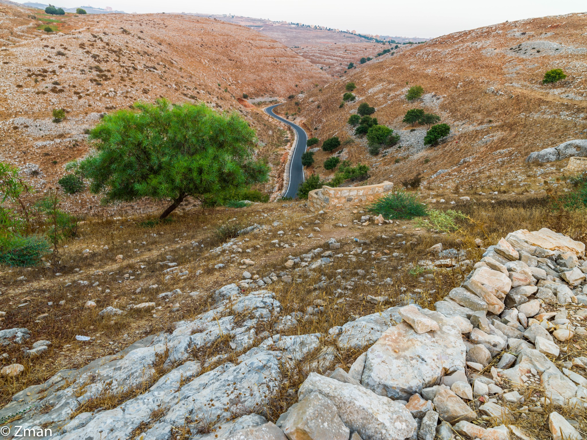 The Winding Road by muhammad.nasser.963