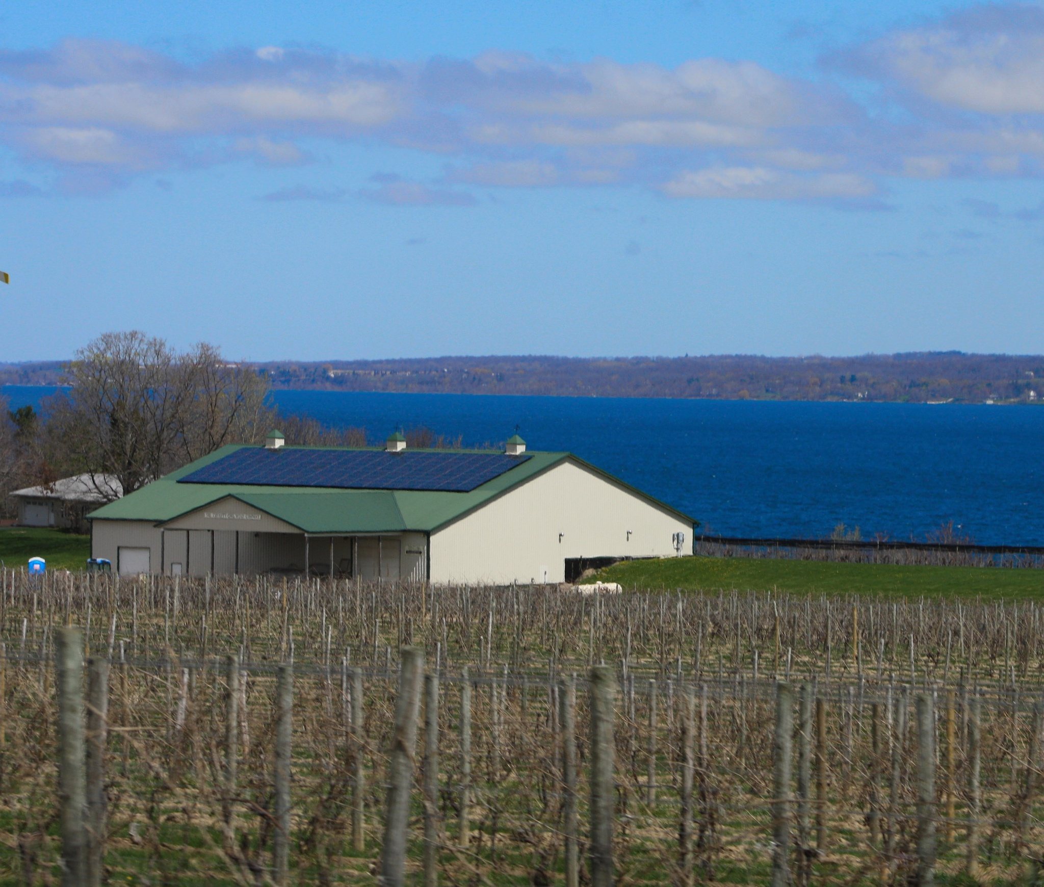 Photo in Landscape #winery #cayuga #ny