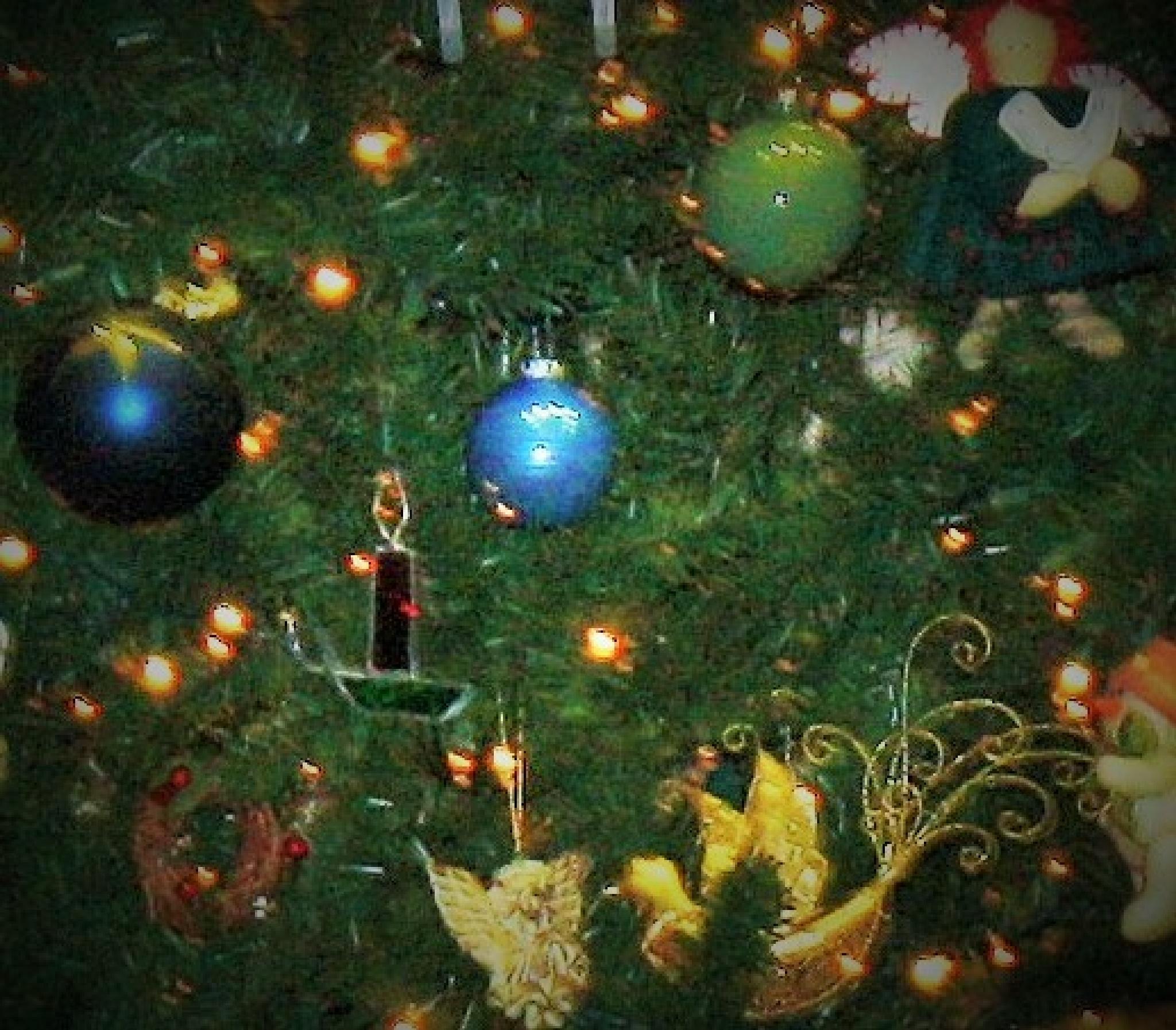 Tree by joann.kunkle