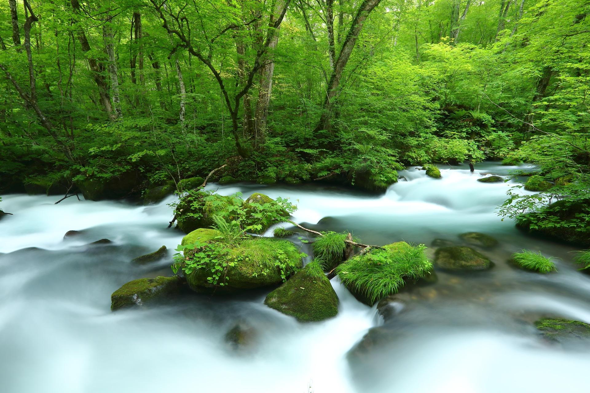 White Stream by takashi.mizoguchi