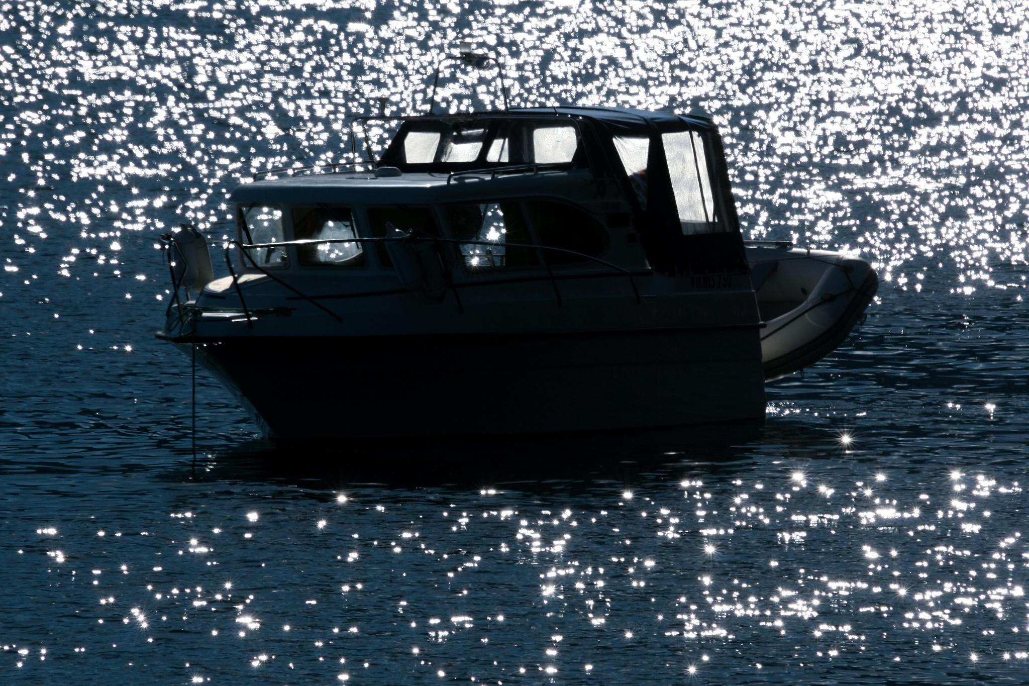 Idyllic sea life by sveinsen