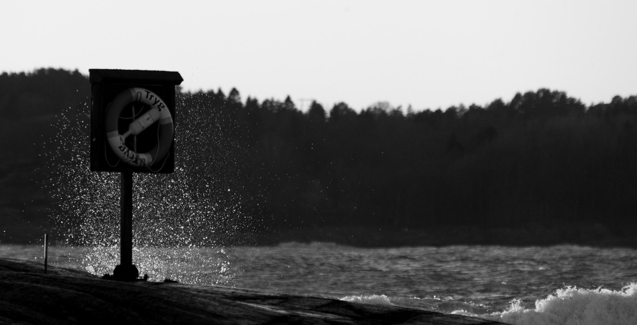 Lifebuoy by sveinsen