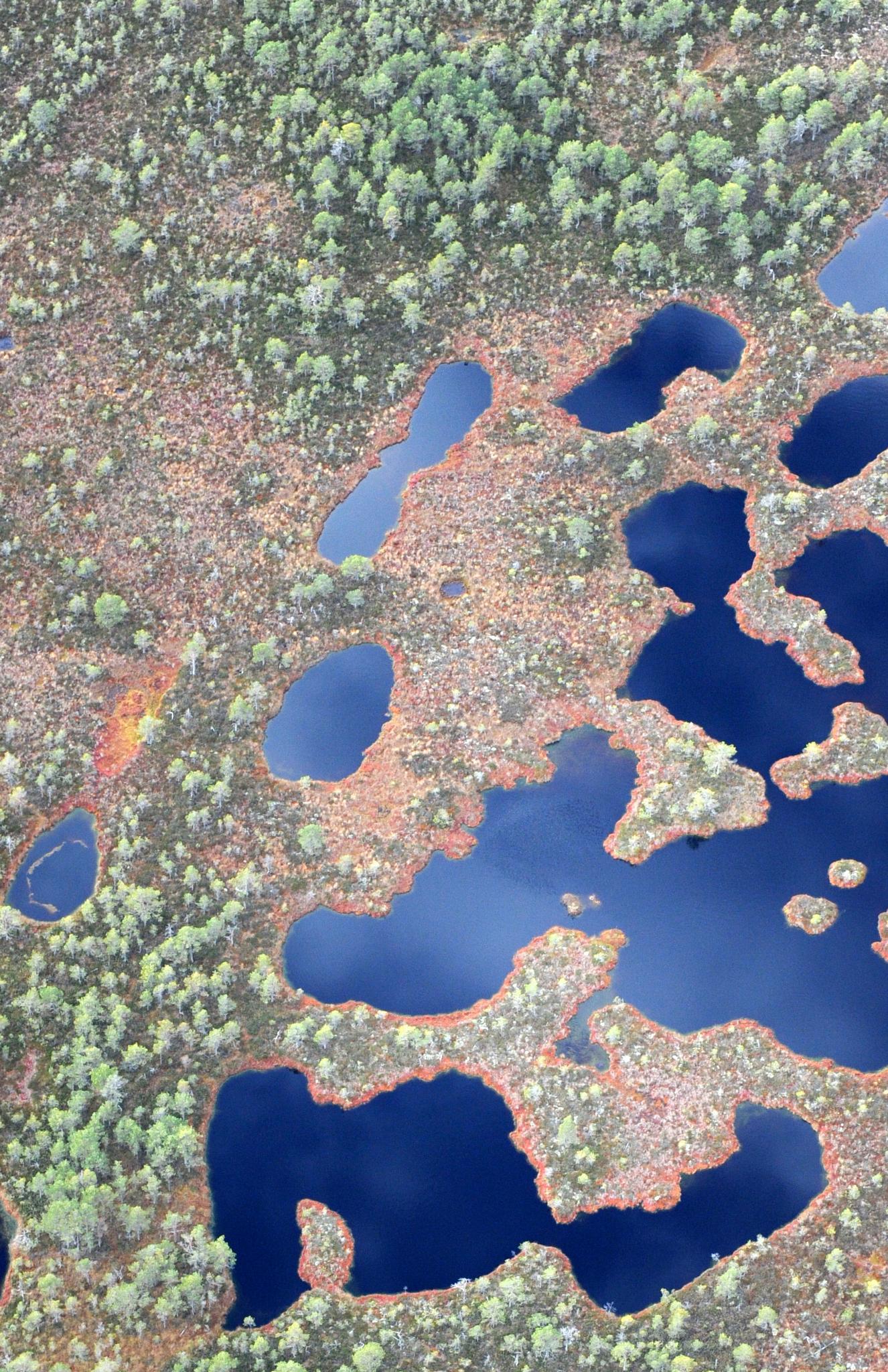 Estonian nature 17.10.2014 by lasse.tur