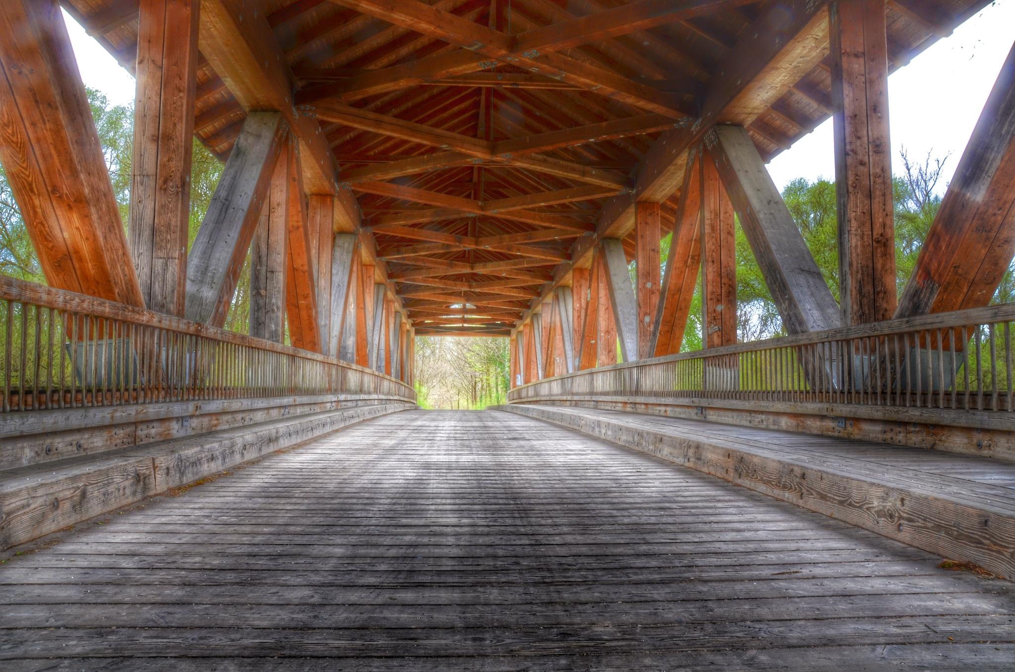 Bridge into the wild by Michael Näther