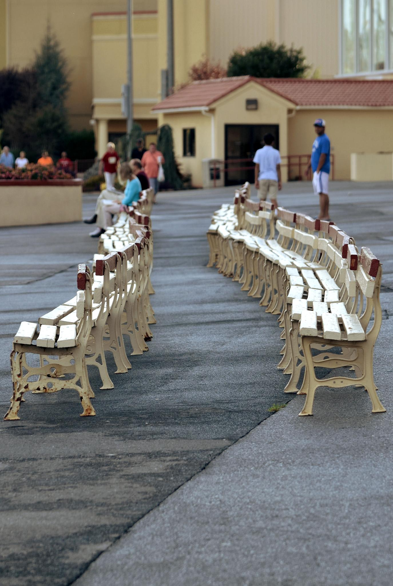 Benches at Charles Town Races by JimFleenor