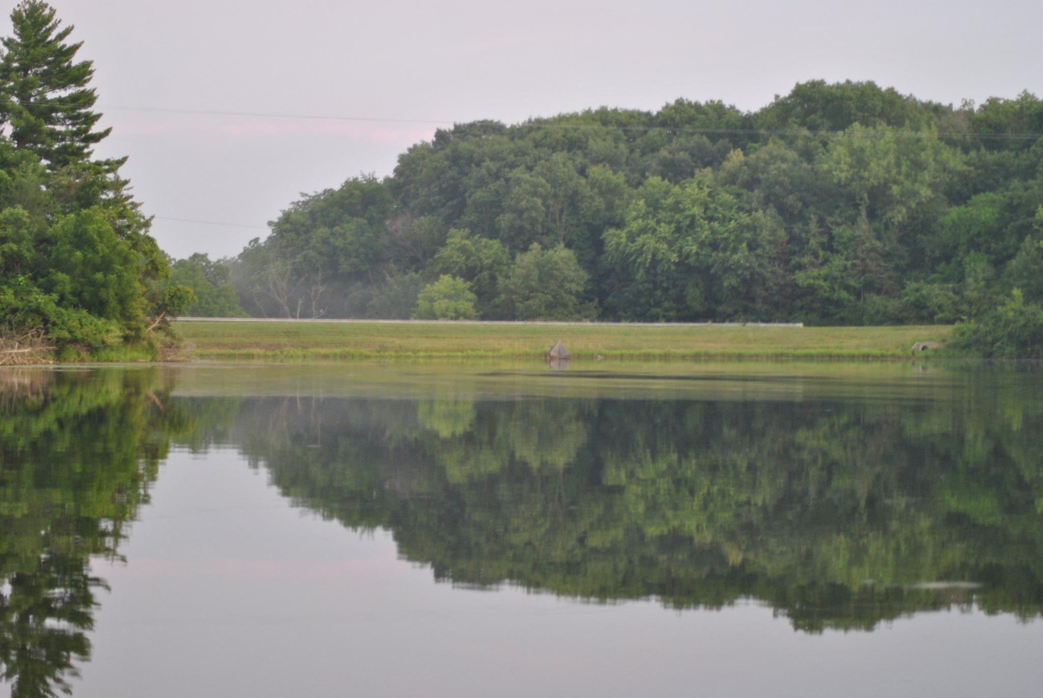 Evergreen Lake by Linda Gifford