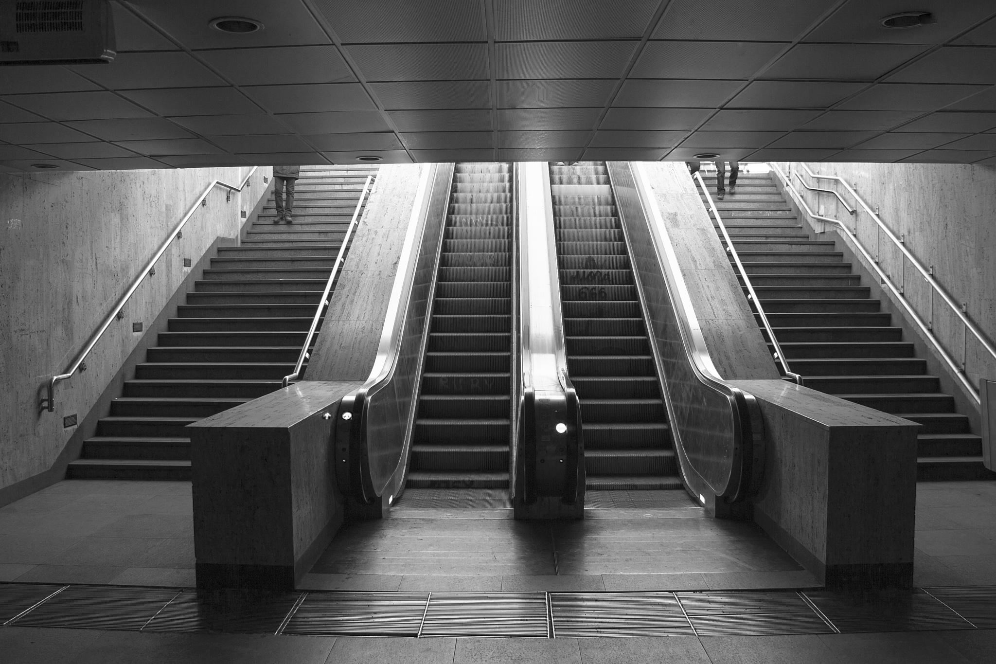 step down... by leonard.petraru