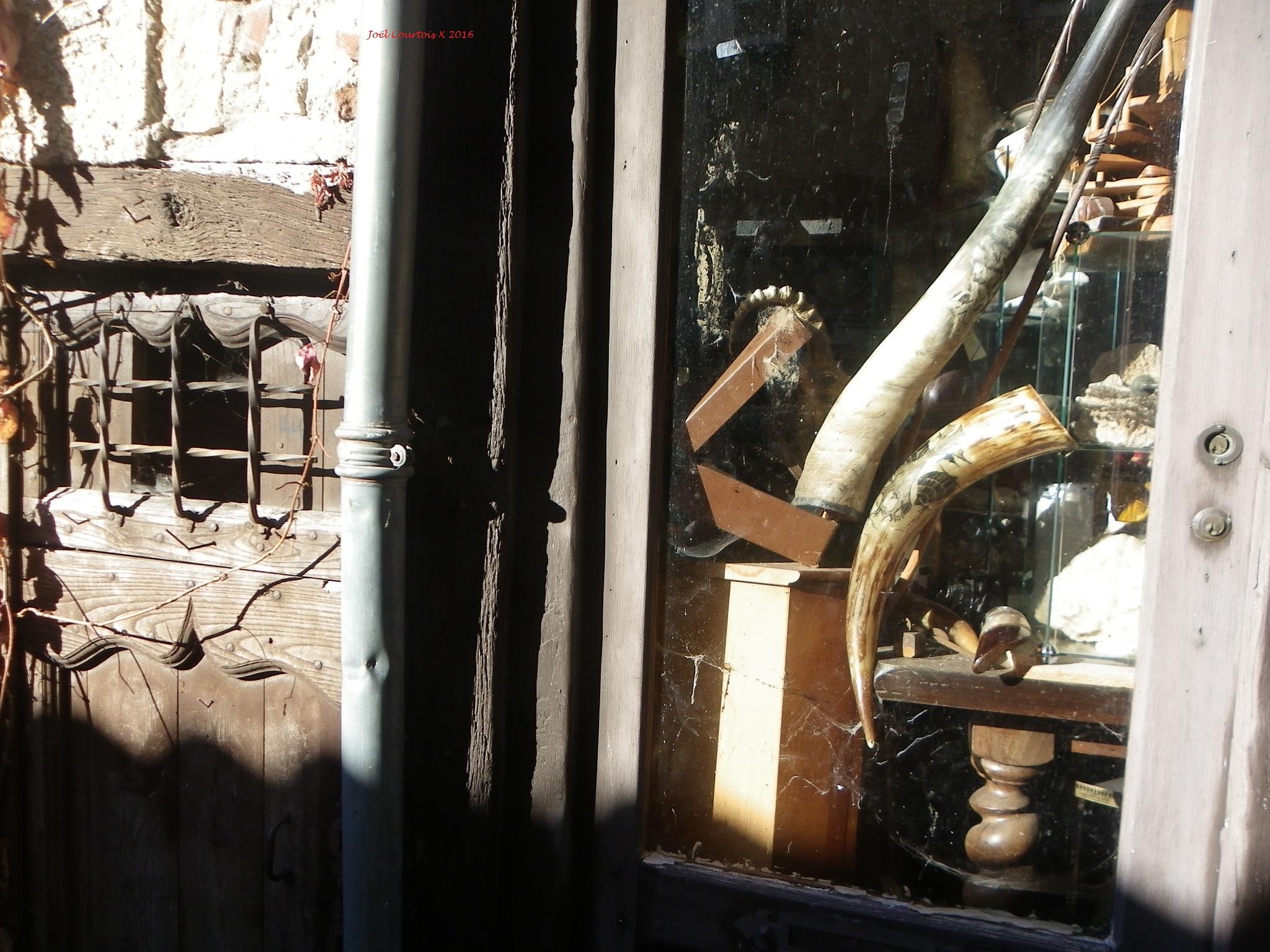 vitrine du sorcier by joel.courtois
