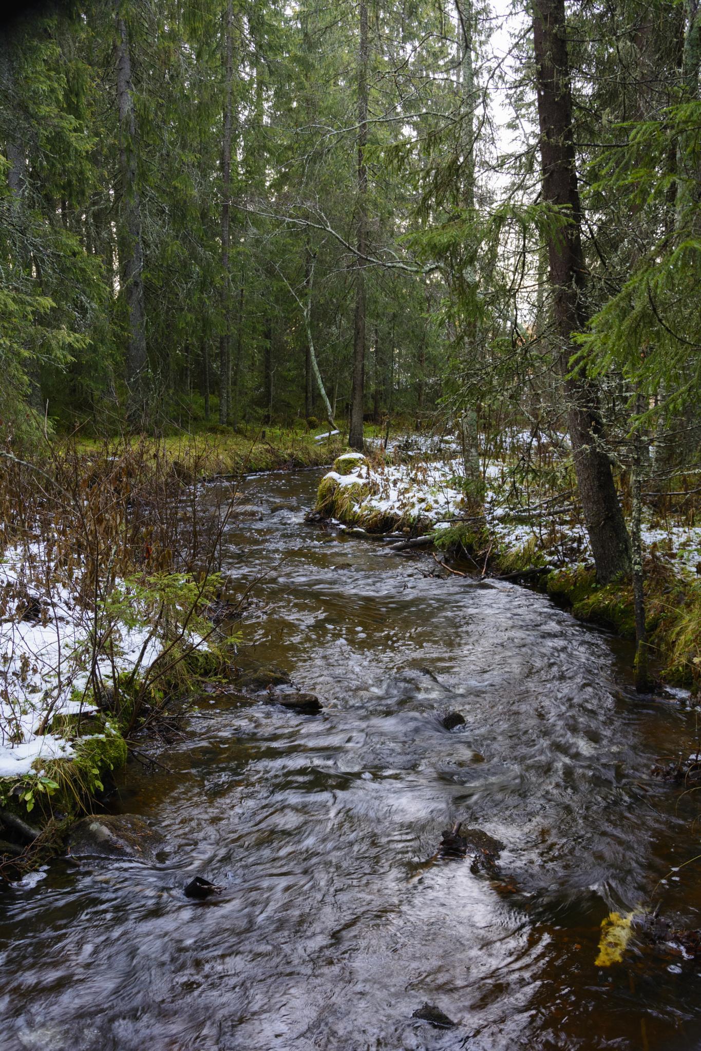 Bäcken by Pehr Åkerblom