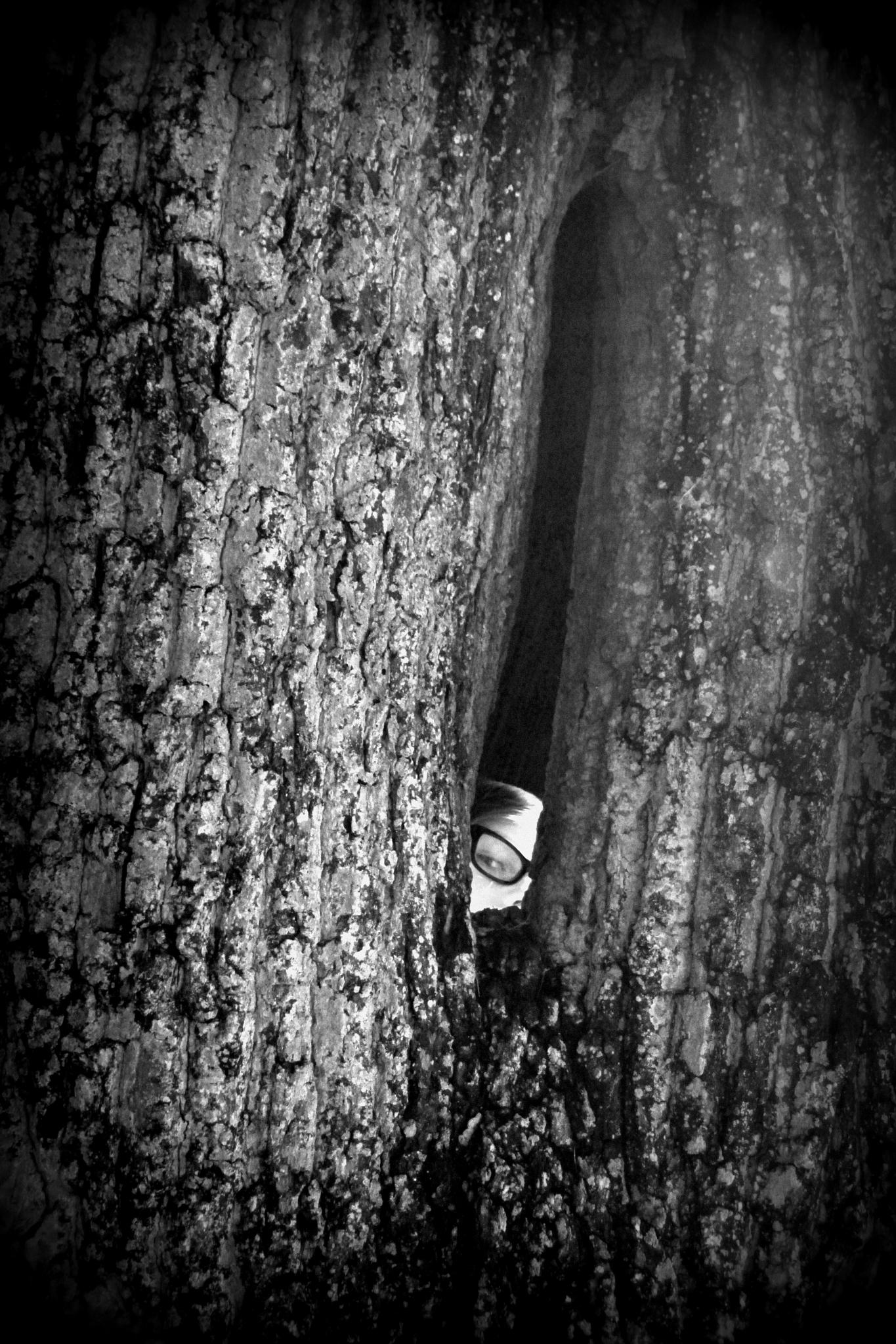 Tree Spirit. by vincent.oates