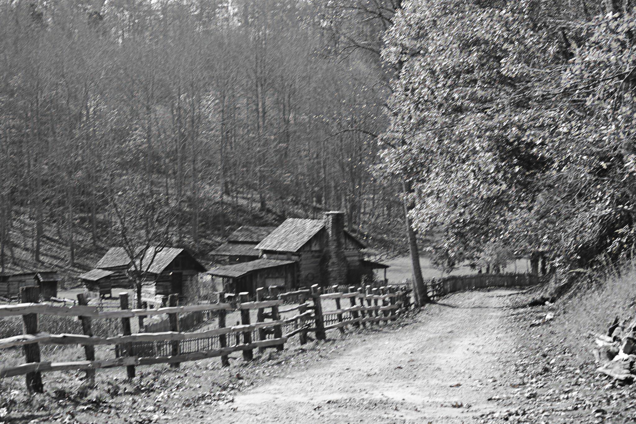 Walk to the Farm by lindandarrell