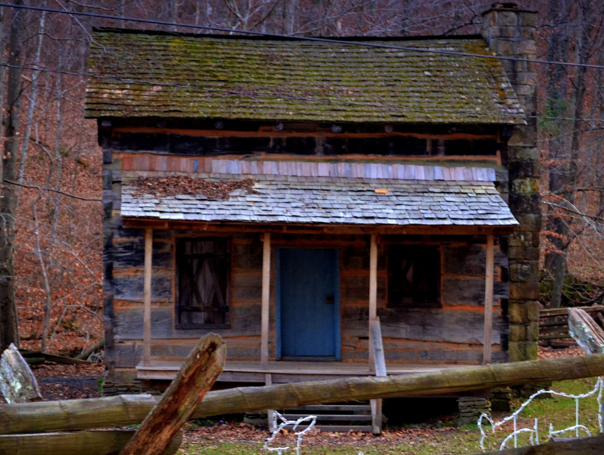 Cabin by lindandarrell