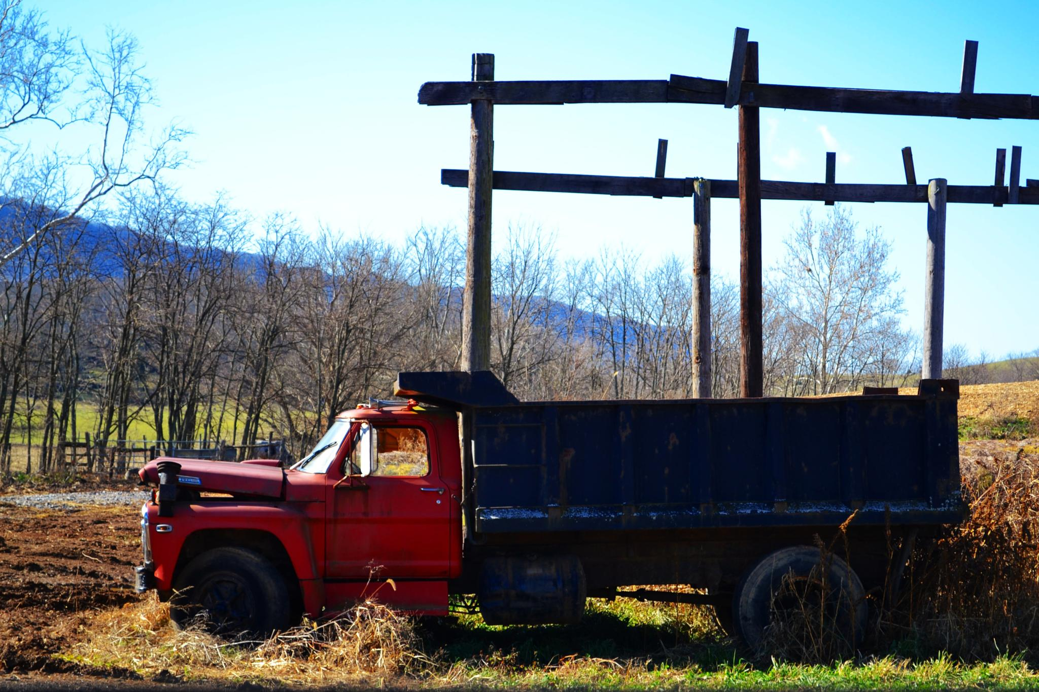 Old Farm Truck by lindandarrell