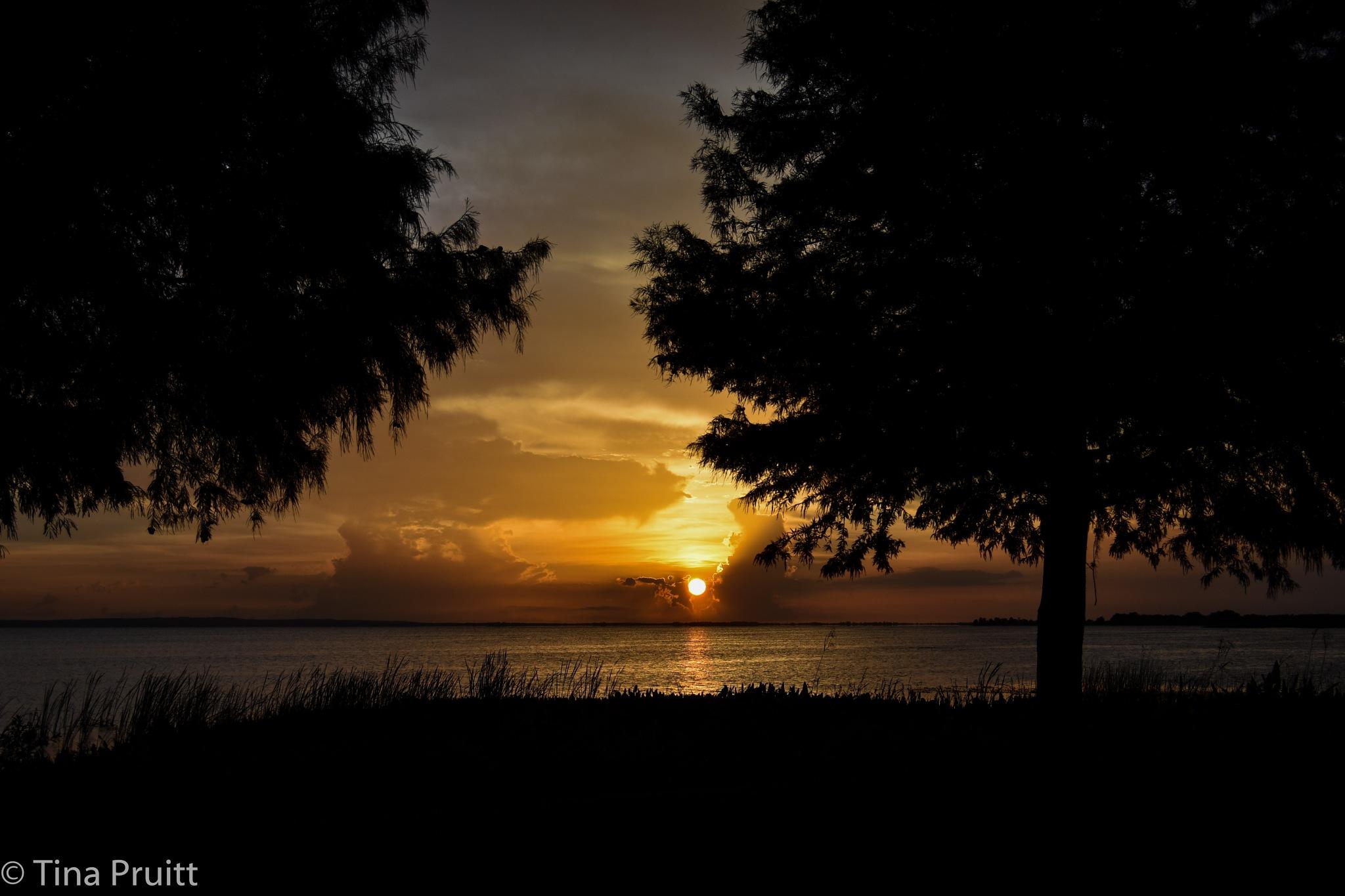 Lake Apopka Sunset by khristyp