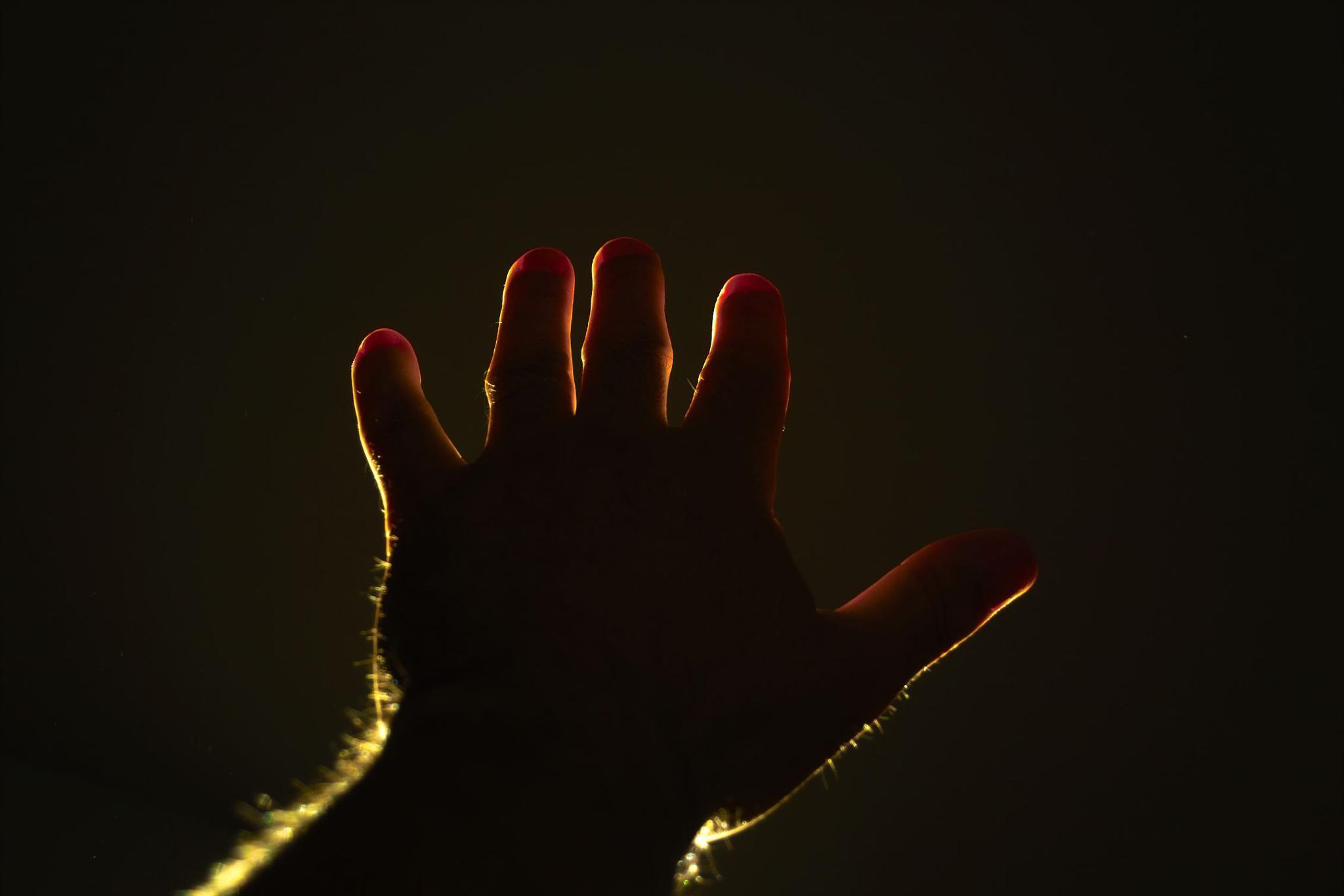 The Hand by munacra