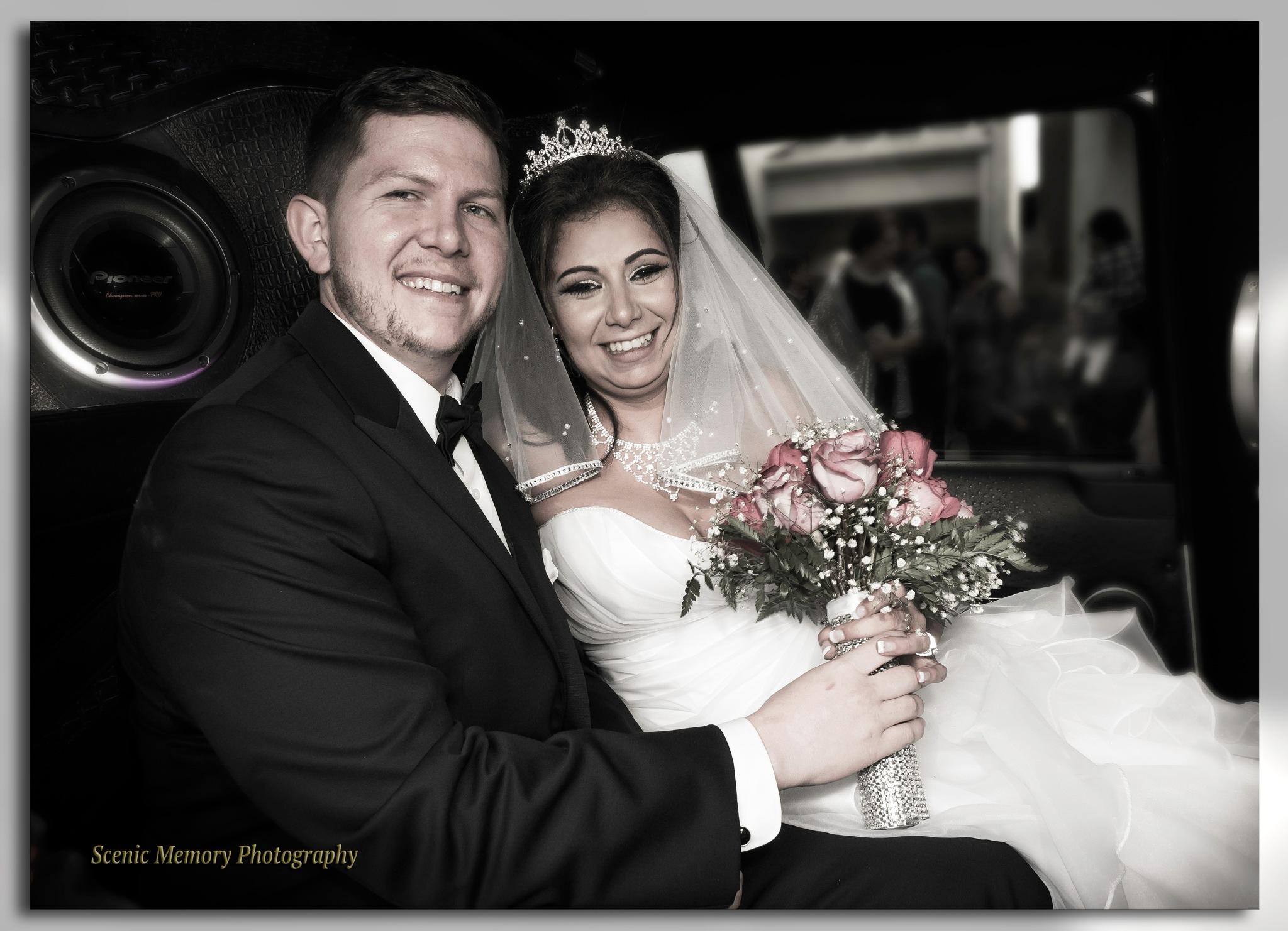 Mary's Wedding Drive to Recep by albair.hanna.9