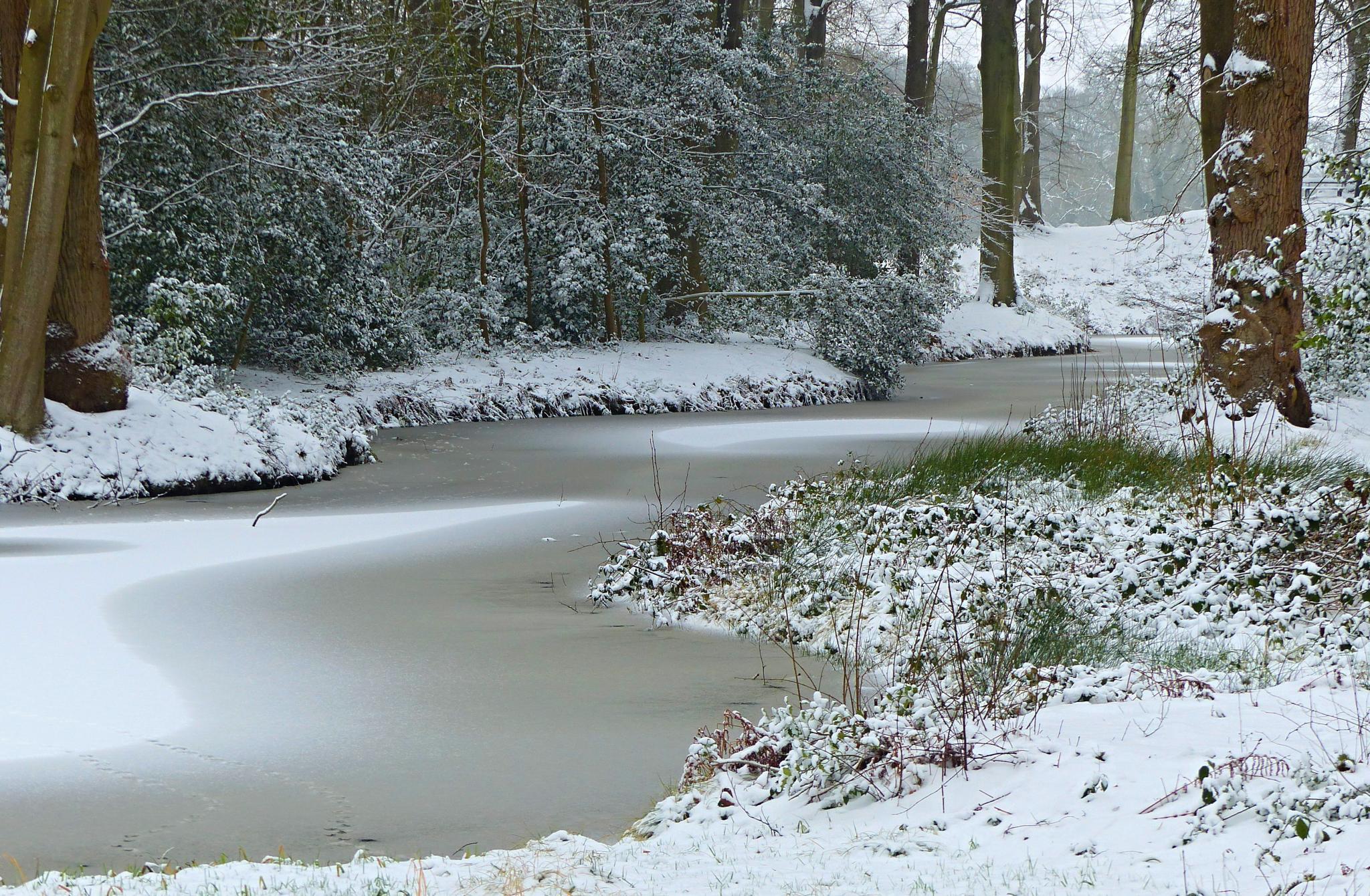 Snowy landscape by berberhoving