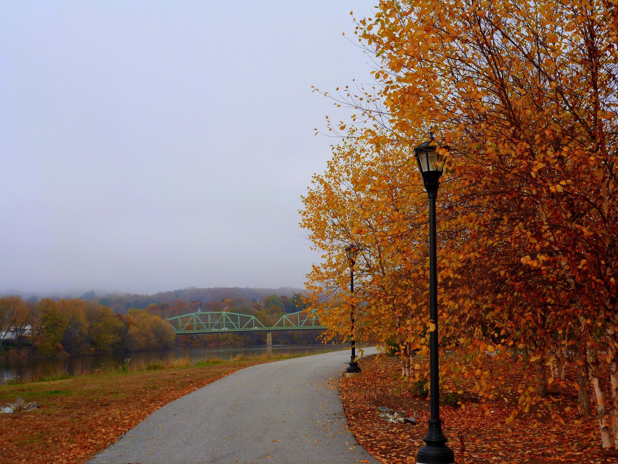 Autumn Color by paulette.king