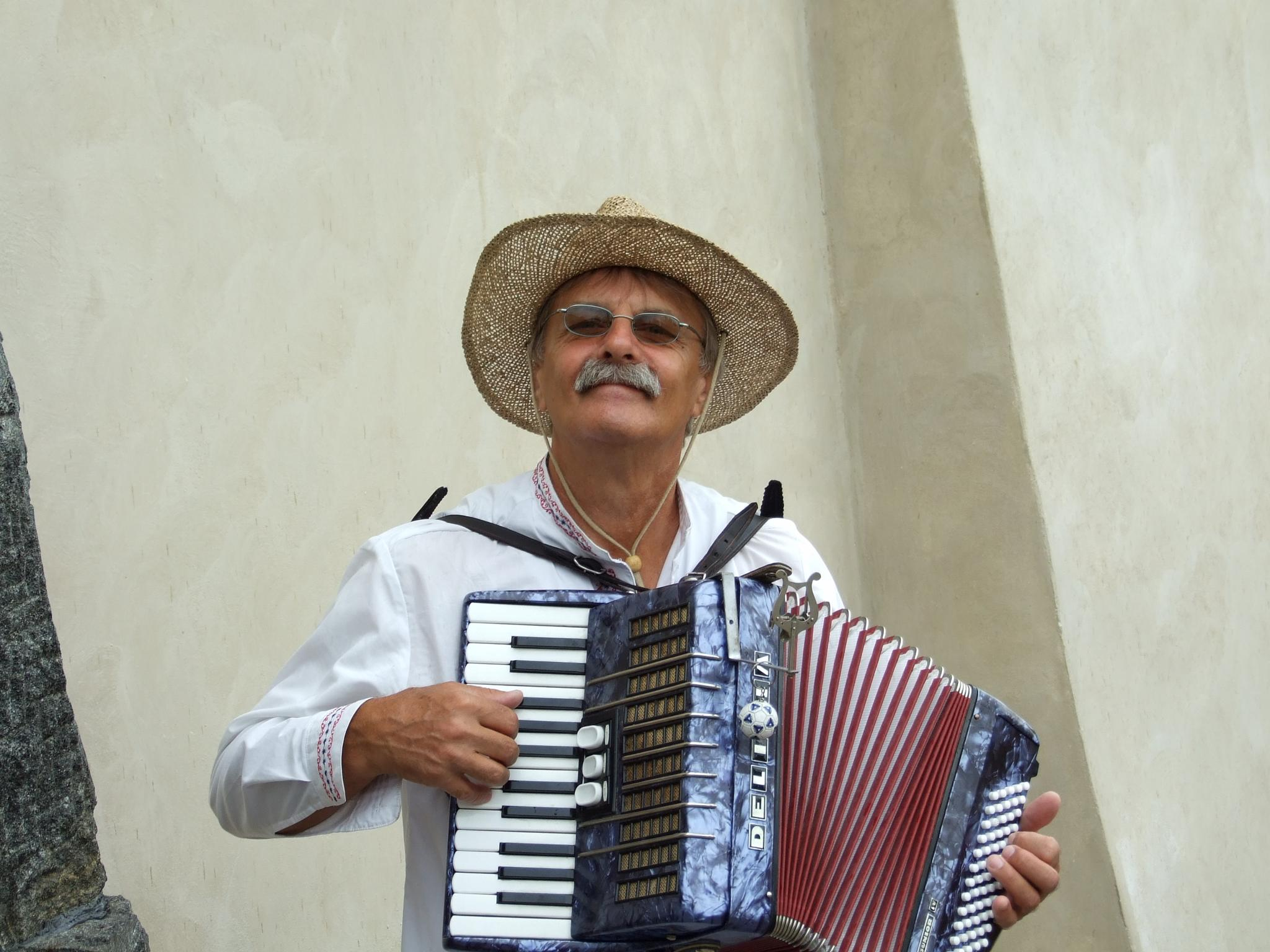 Czech Accordion Player by ldguard