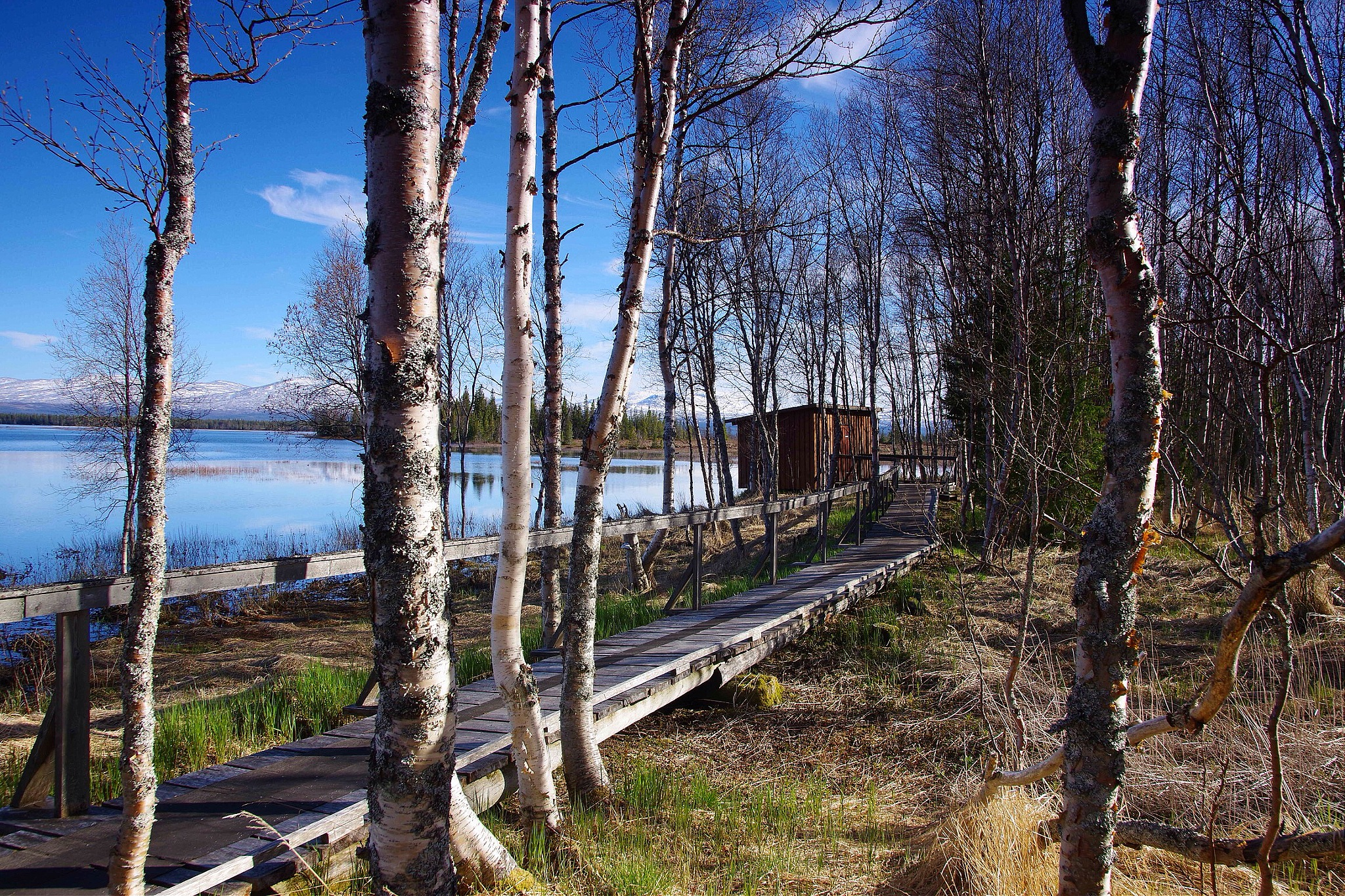Lake Ånnsjön, Sweden by lundhanders