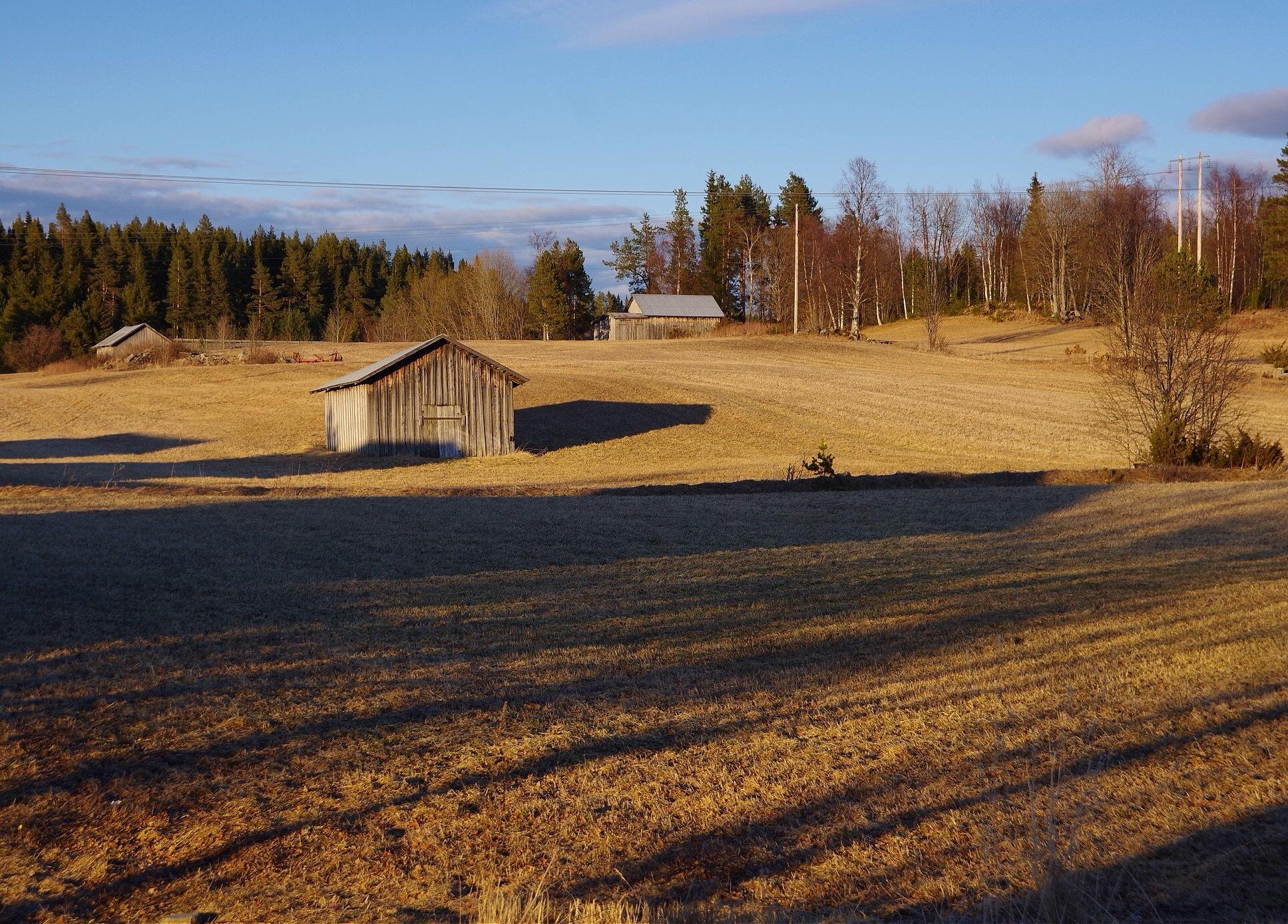 Spring in Jämtland, Sweden by lundhanders