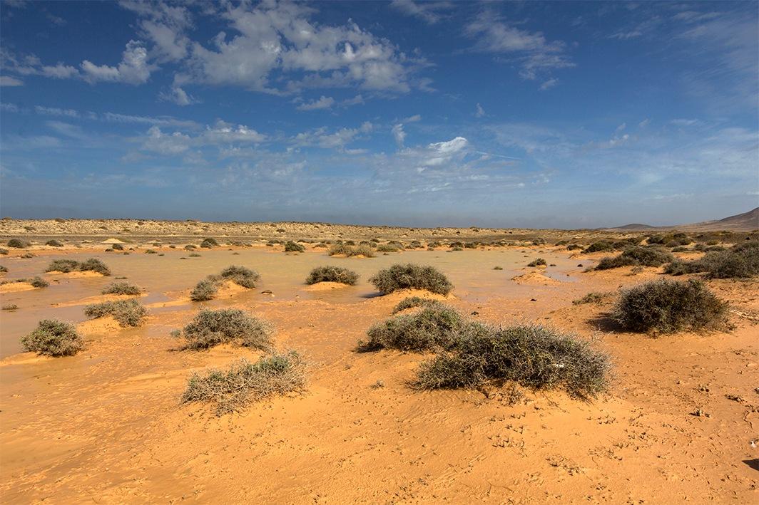 sandy landscape in Fuerteventura by Agne Säterberg