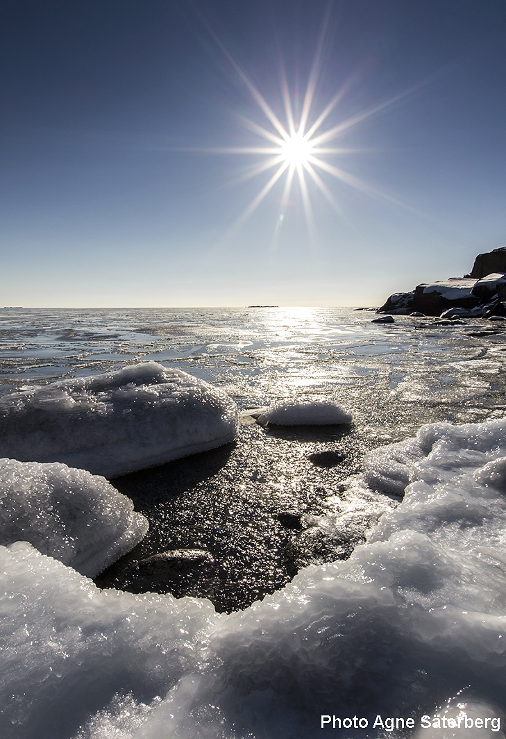 A wonderful day out by the sea! by Agne Säterberg