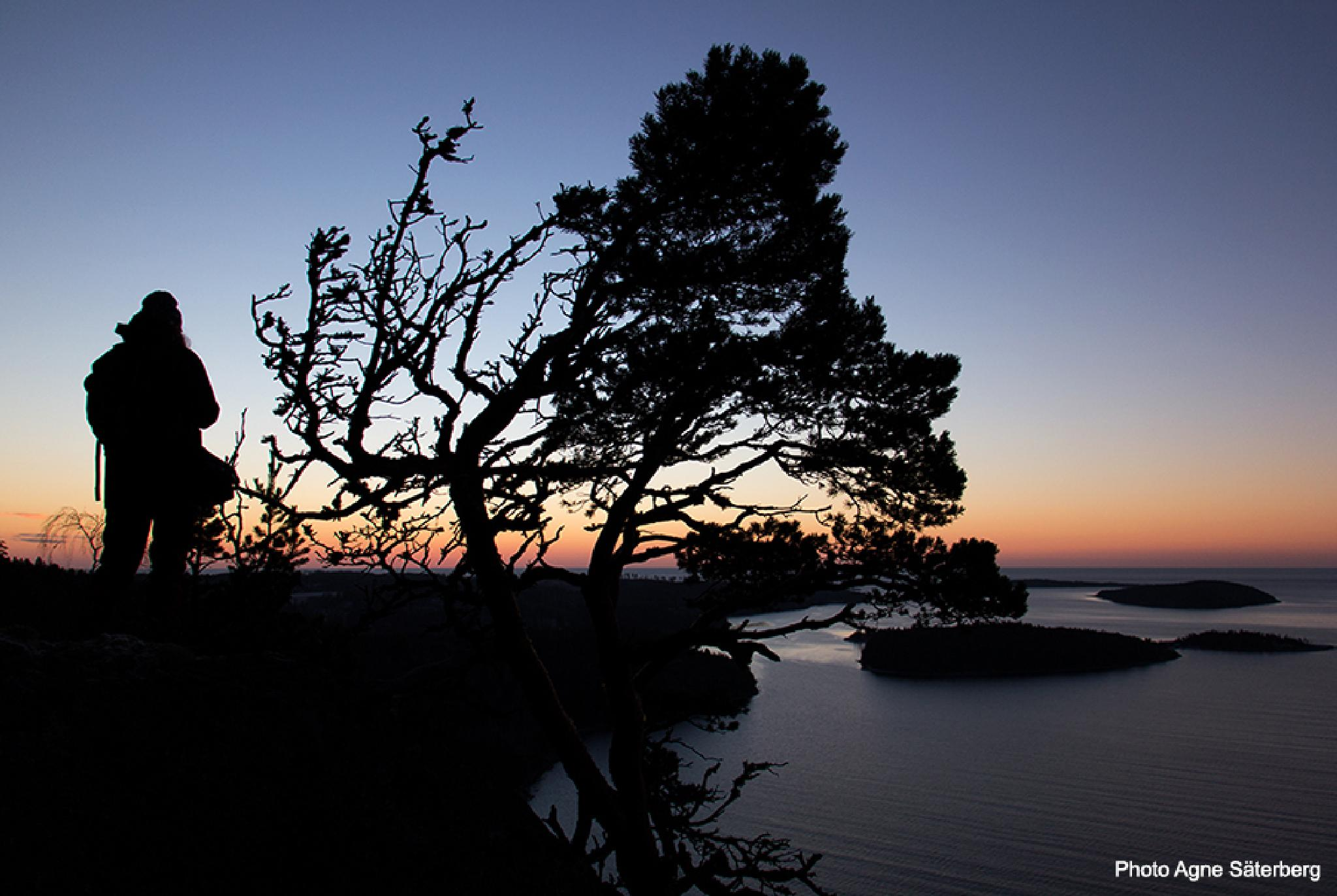 High Coast World Heritage, Sweden by Agne Säterberg