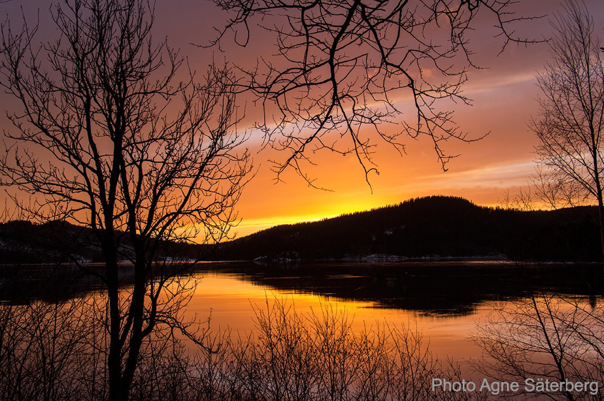 Sunset at Lappudden in Nordingrå, Sweden by Agne Säterberg