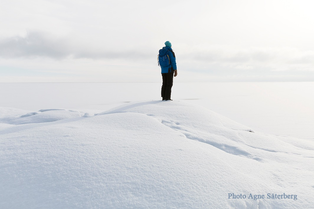 White all the way to the horizon by Agne Säterberg