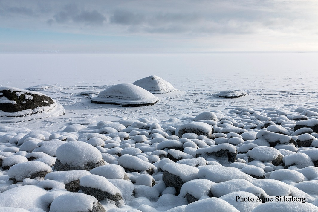 A frozen sea by Agne Säterberg