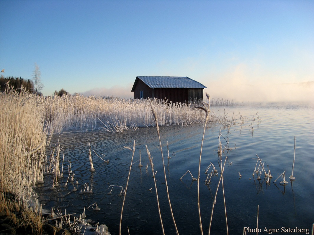 Frosty morning in the High Coast World Heritage by Agne Säterberg