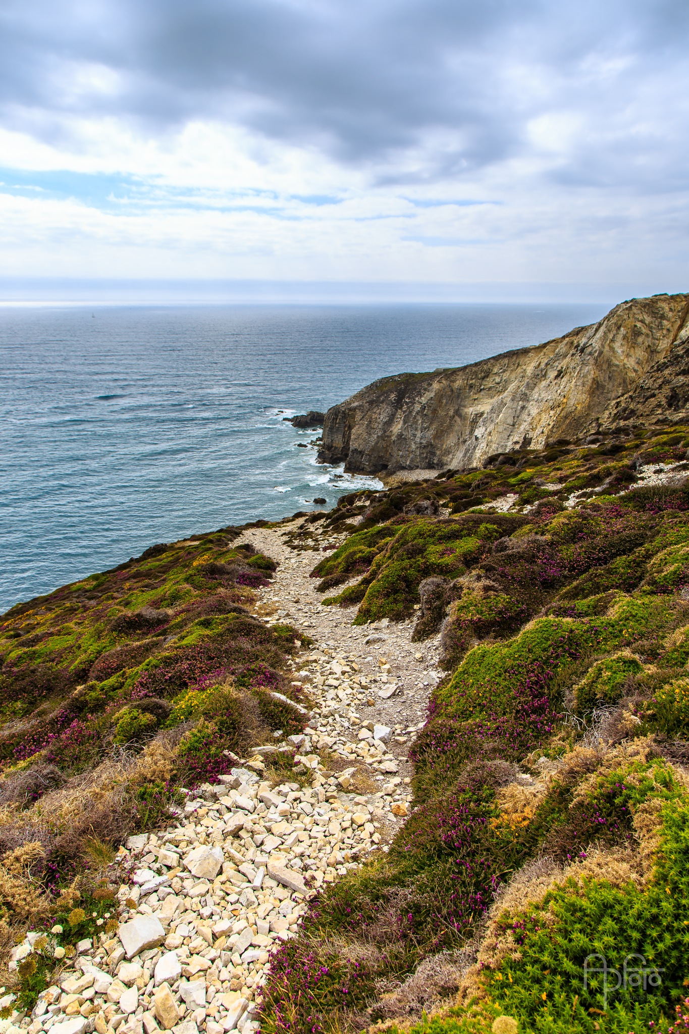 Rocky Trail by Andreas Pidde