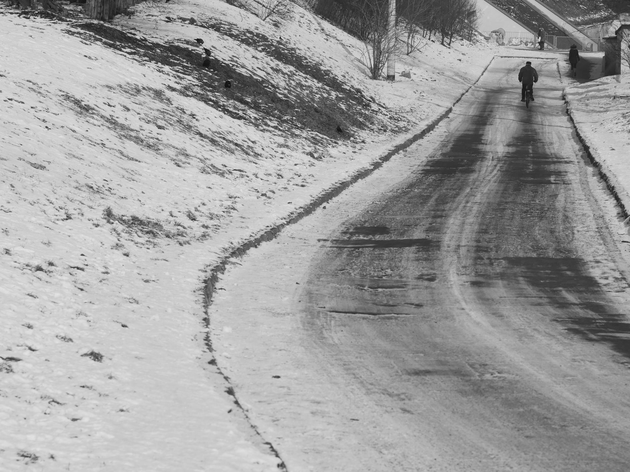 Winter road by skiboarts