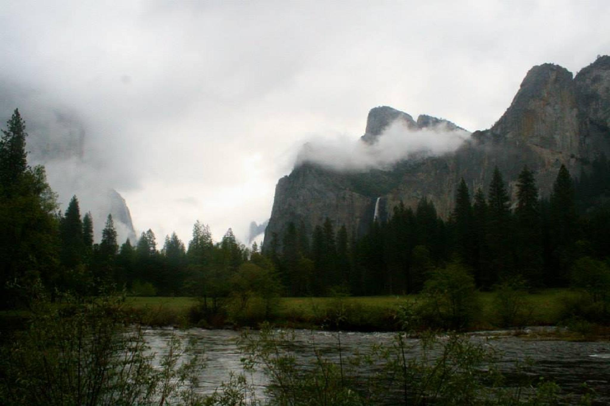 Cloudy Yosemite by sandy.darnstaedt