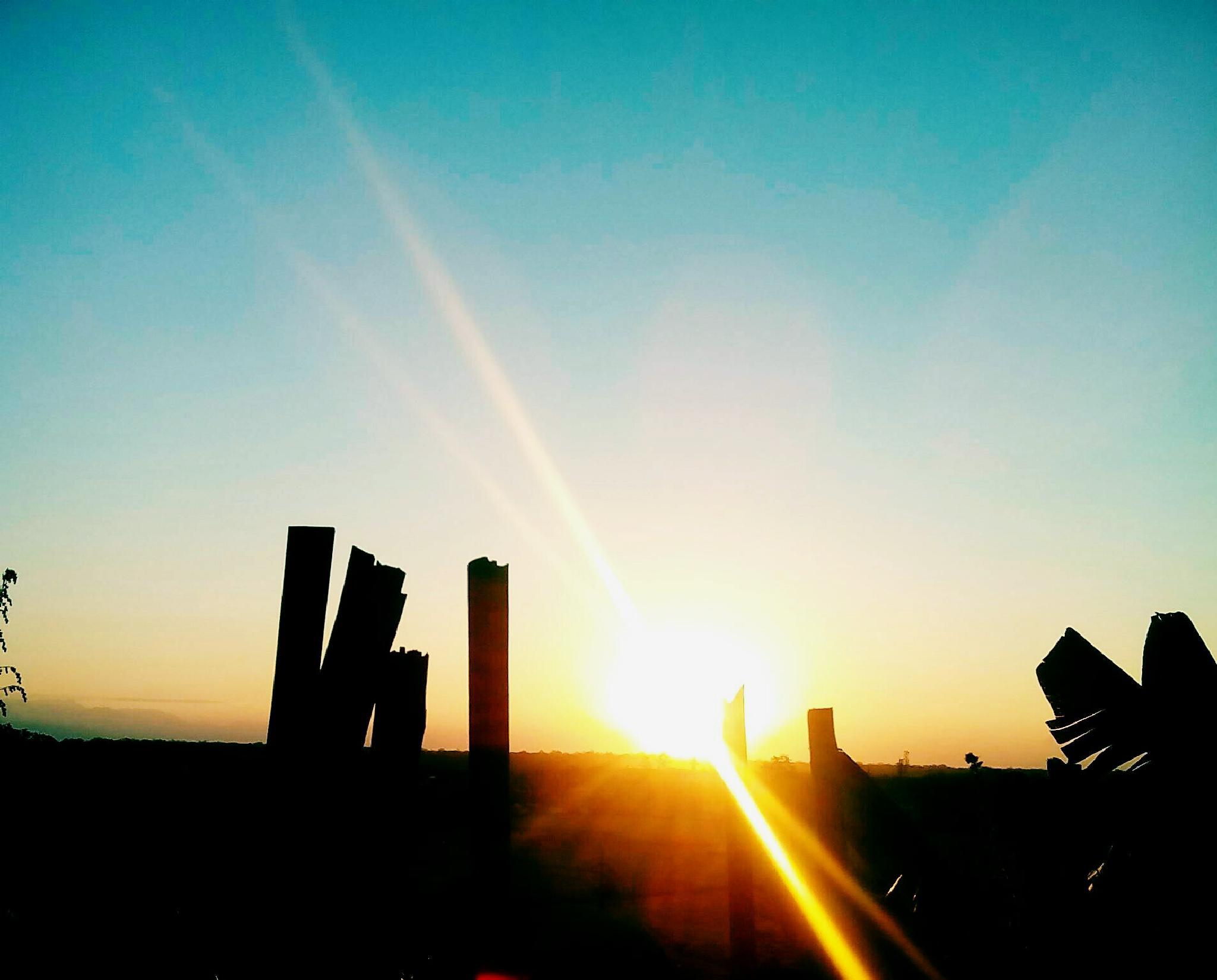 morning shot by jerry.lemme
