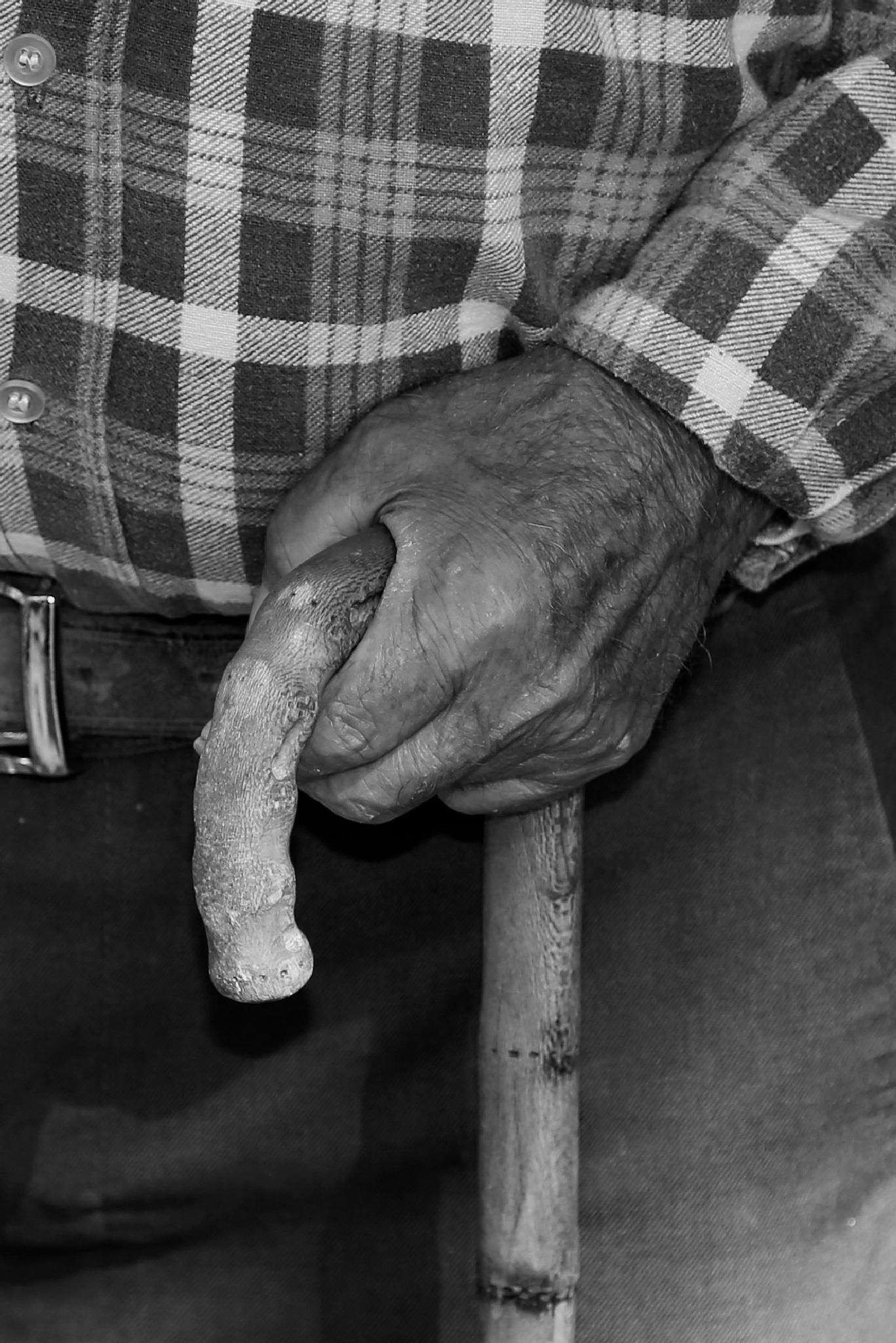 Mãos de trabalho by paula.miranda