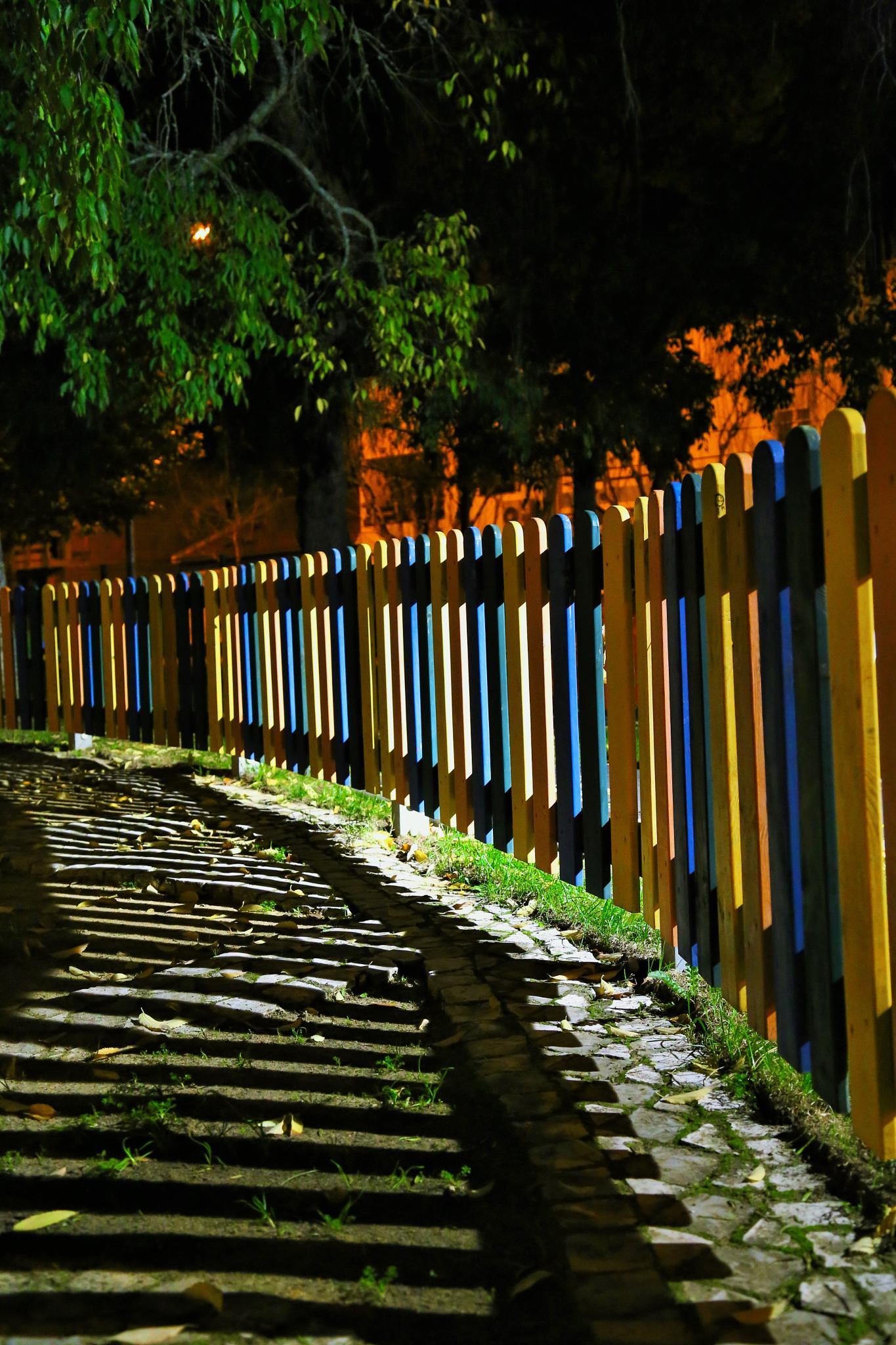 Line by paula.miranda