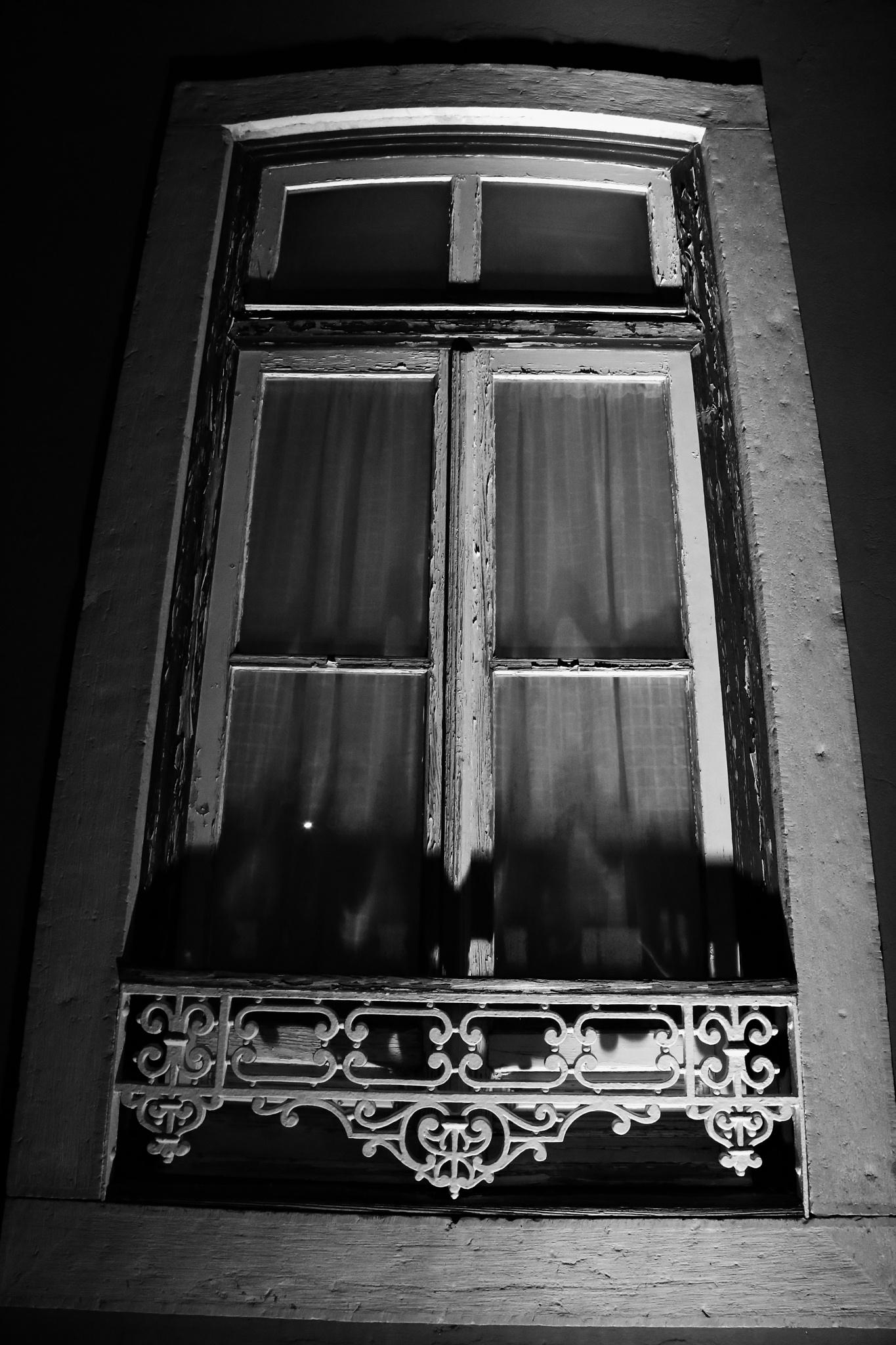 windows by paula.miranda