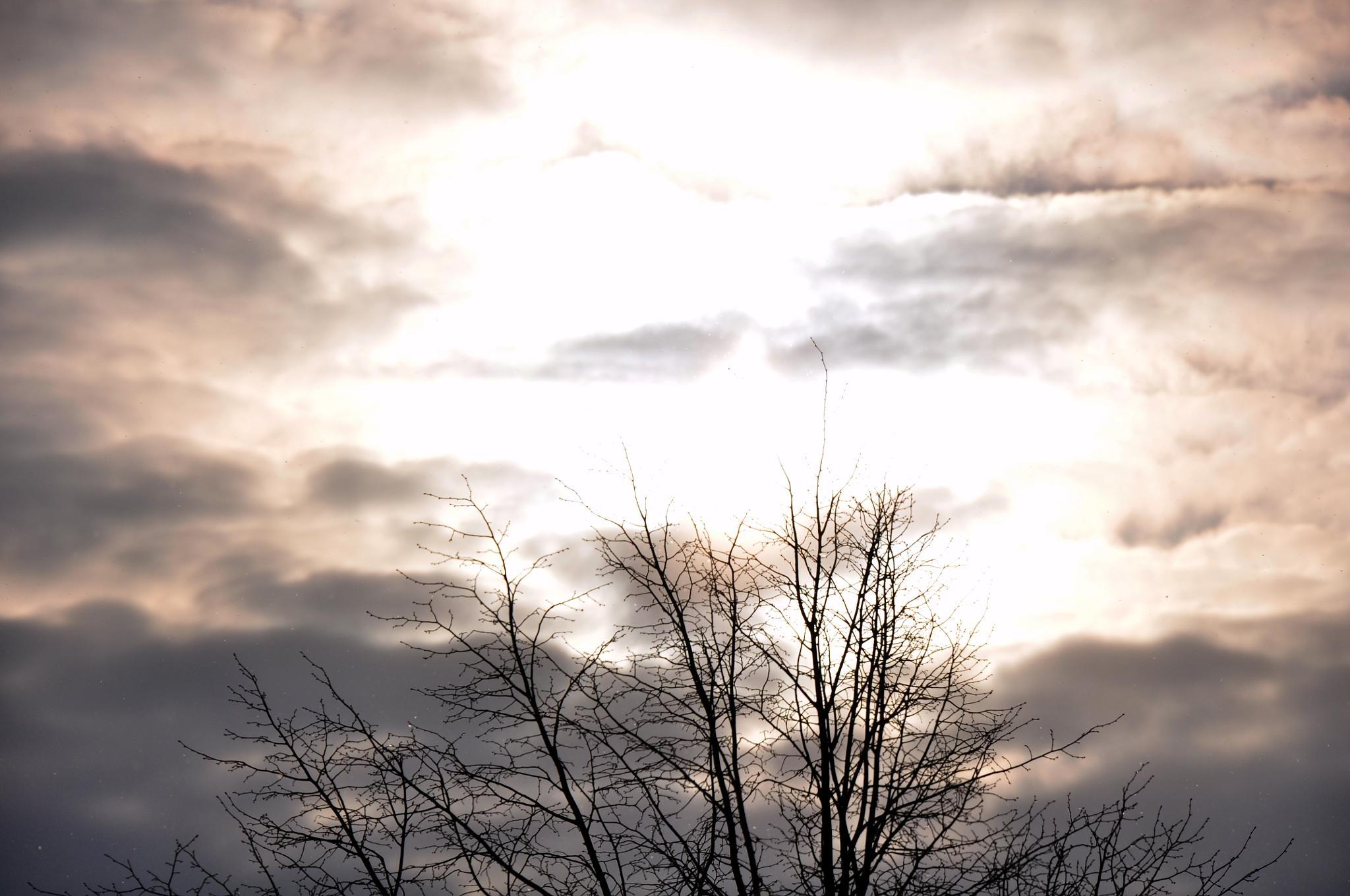 Sky by tarikkilic