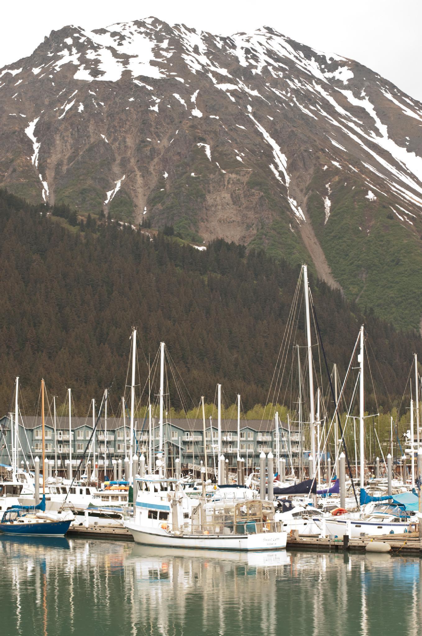 boats in the harbor by debra.louden1