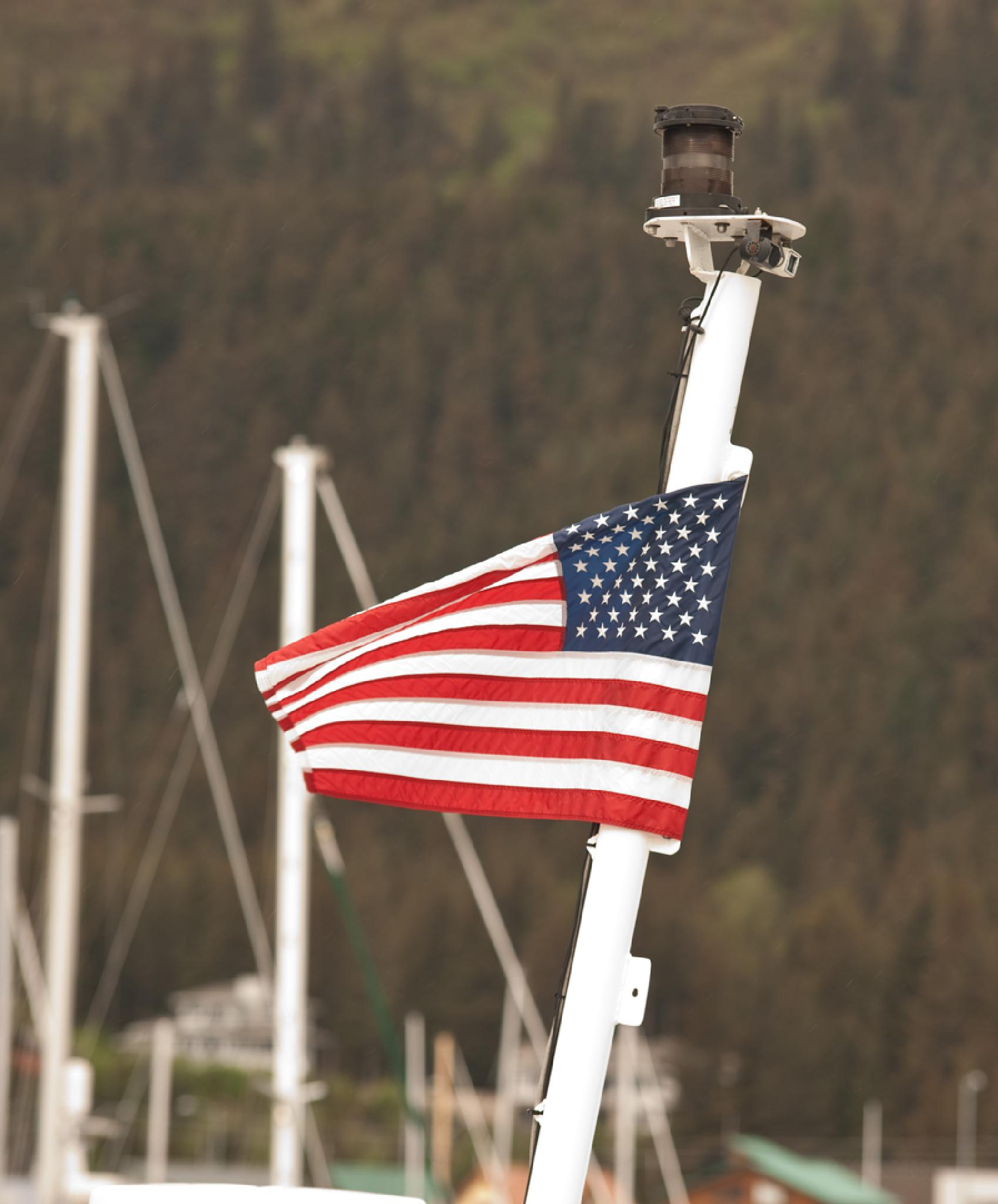 Flying the flag by debra.louden1