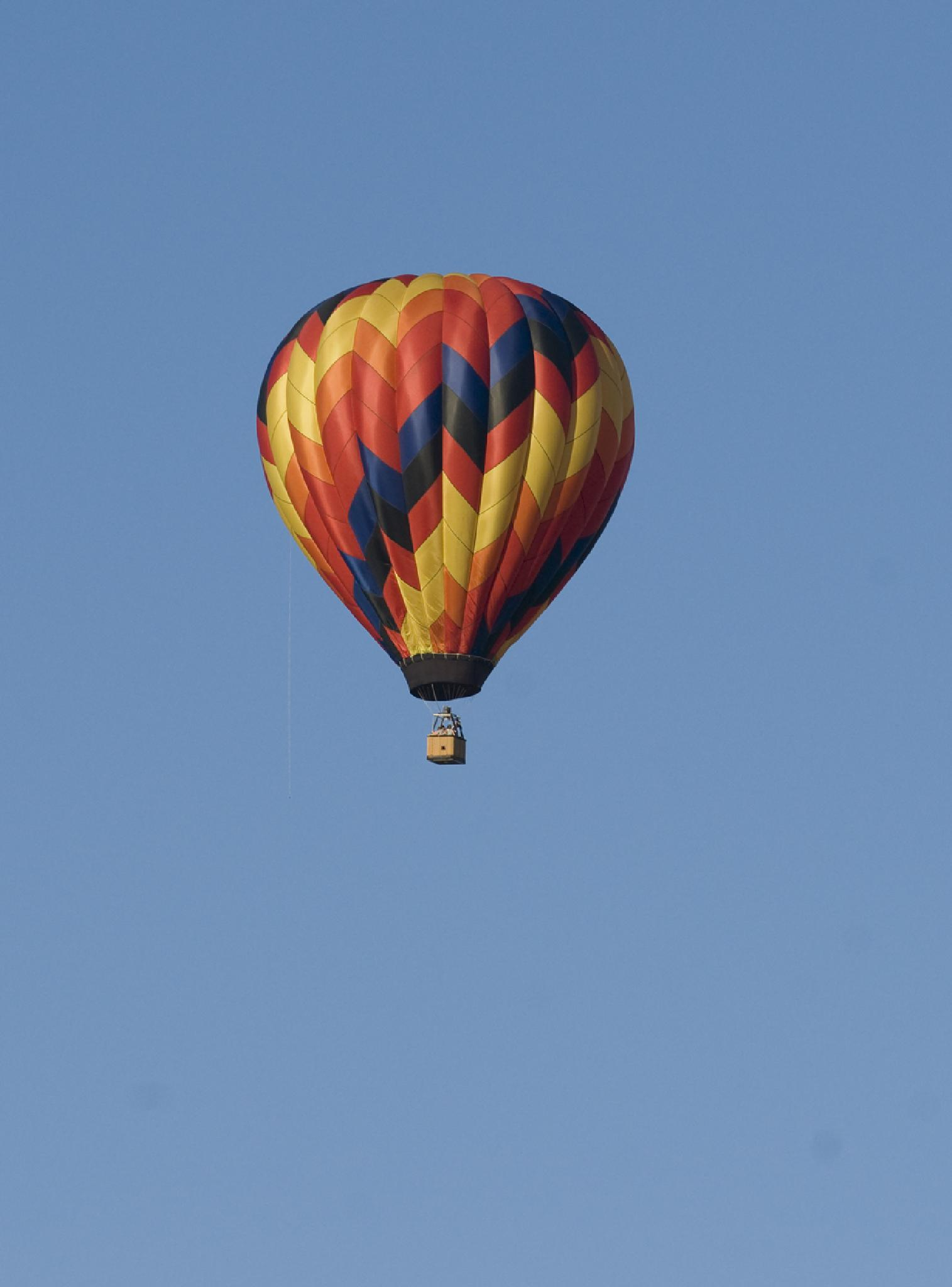 Up up and away by debra.louden1