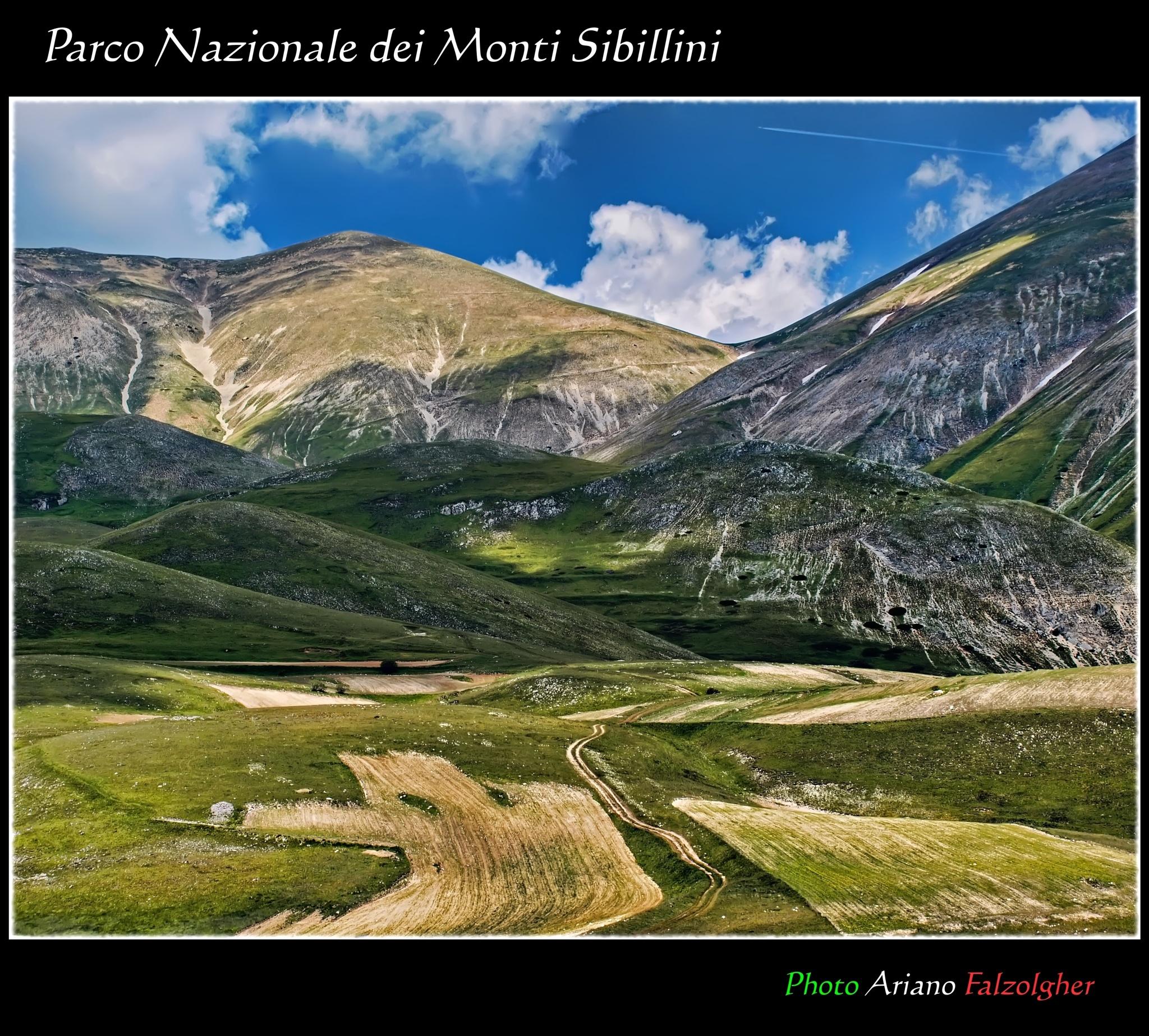 Pian Grande, Parco nazionale dei Monti Sibillini by Ariano Falzolgher