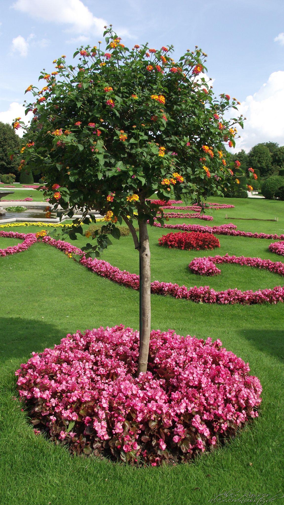 Schlosspark Schönbrunn by alexrasser